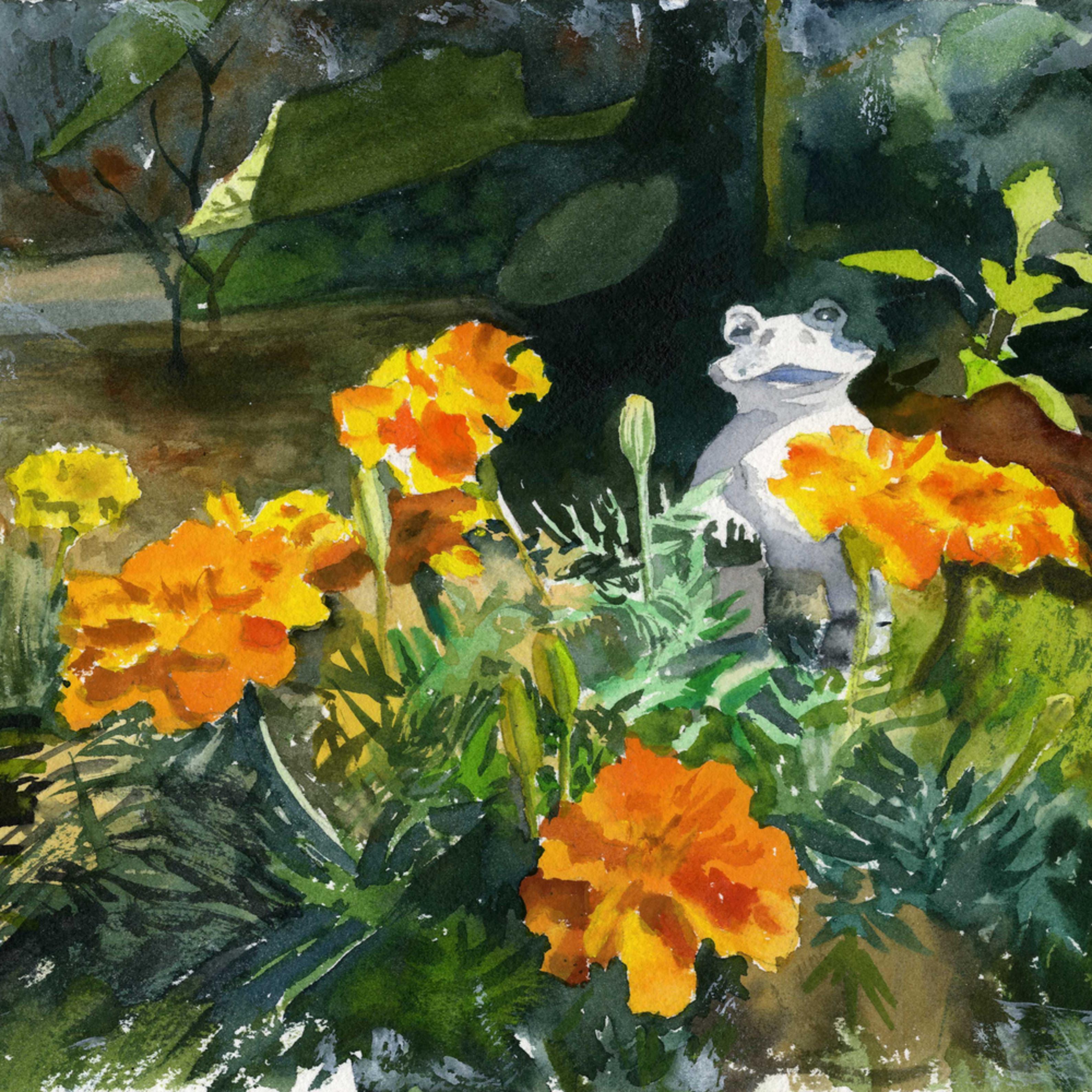 Marigold garden asf mdwl7i