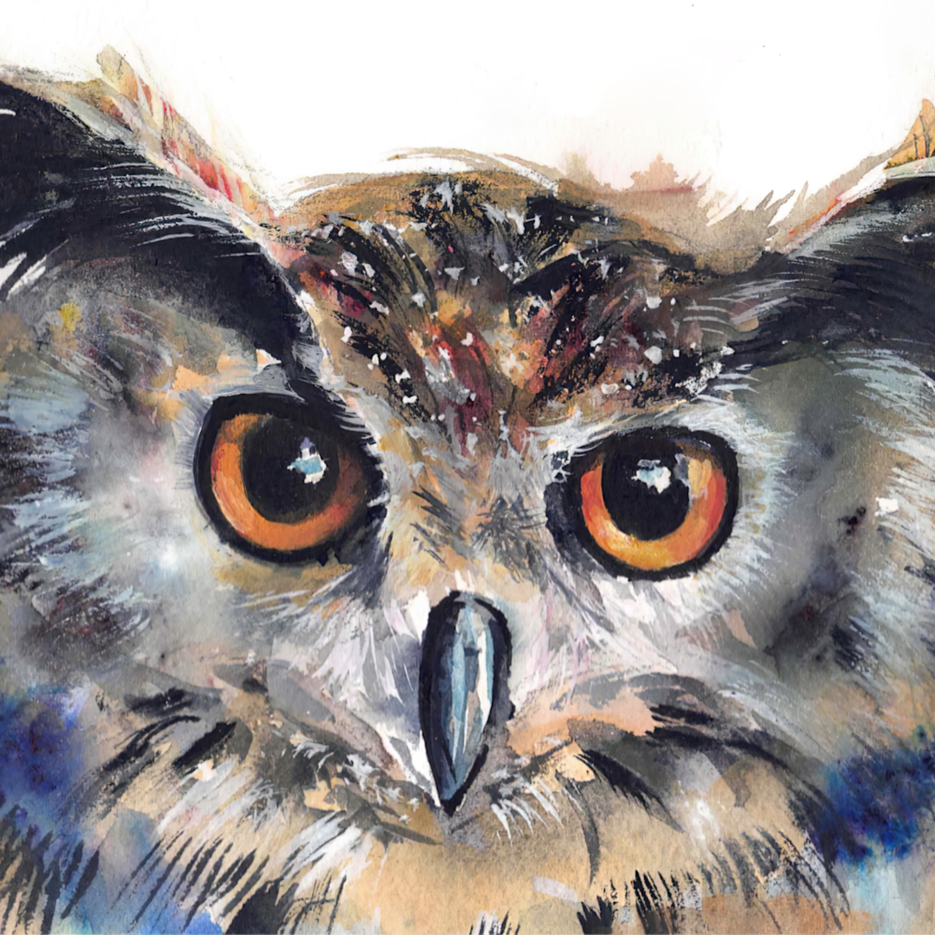Owlberty q3u8tw