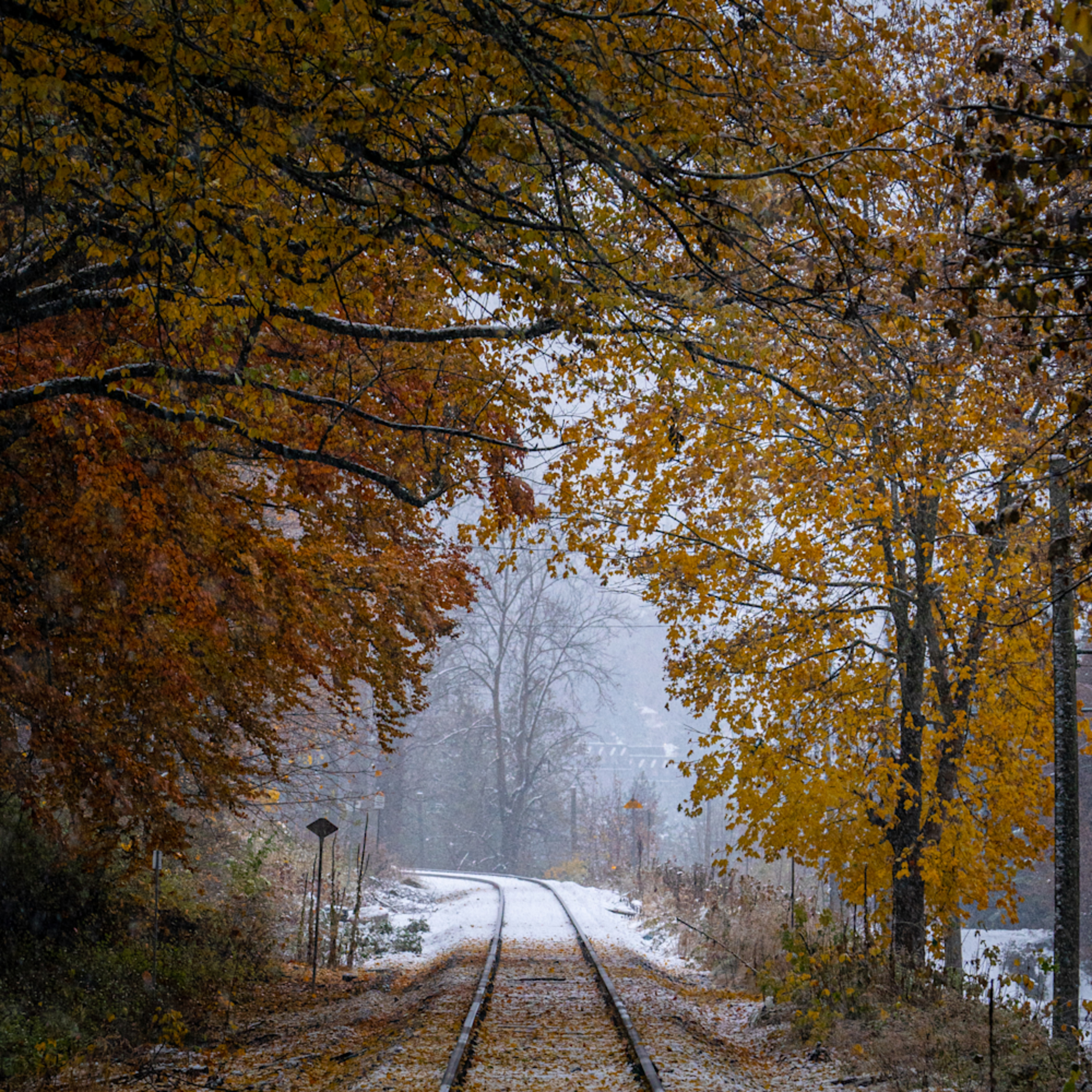 Twp snow and fall railroad 20201113 0002 go1y82