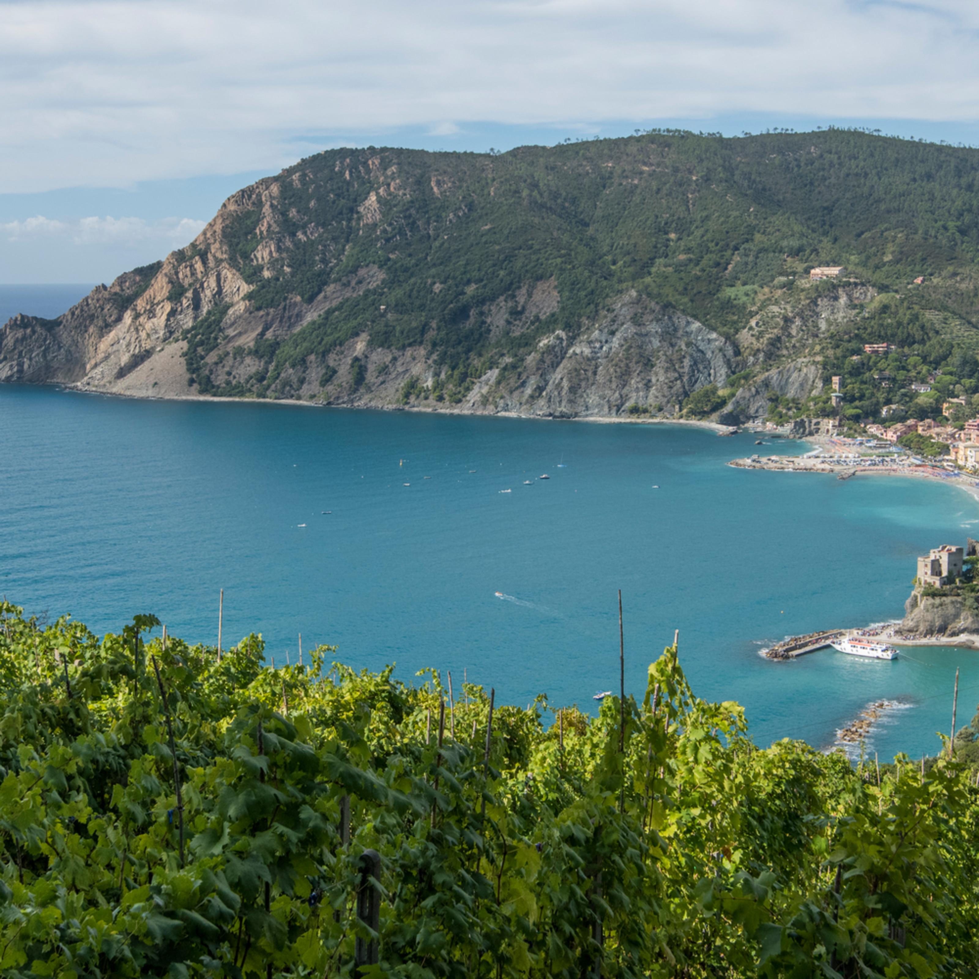 Monterosso overlook from vinyard e6ml4d
