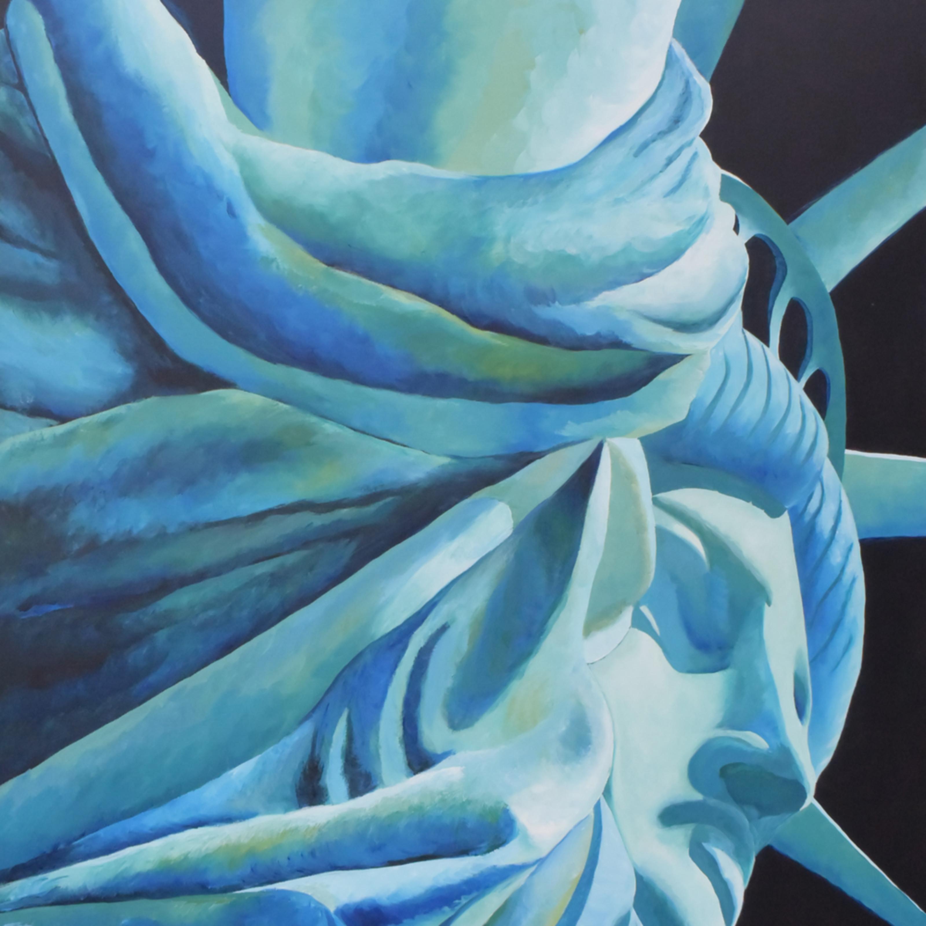 Liberty open edition x5l8cr