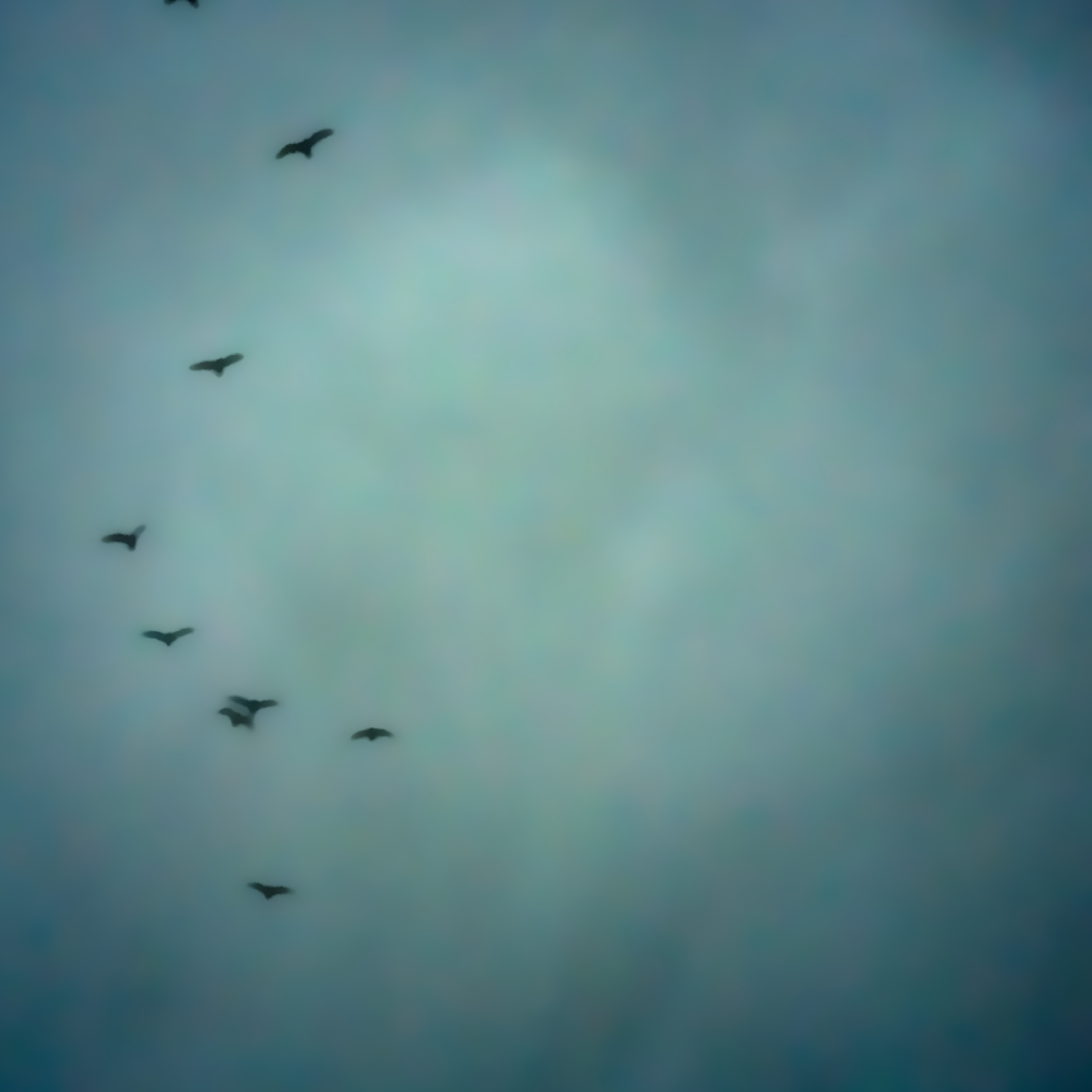 Sky hwcvx5