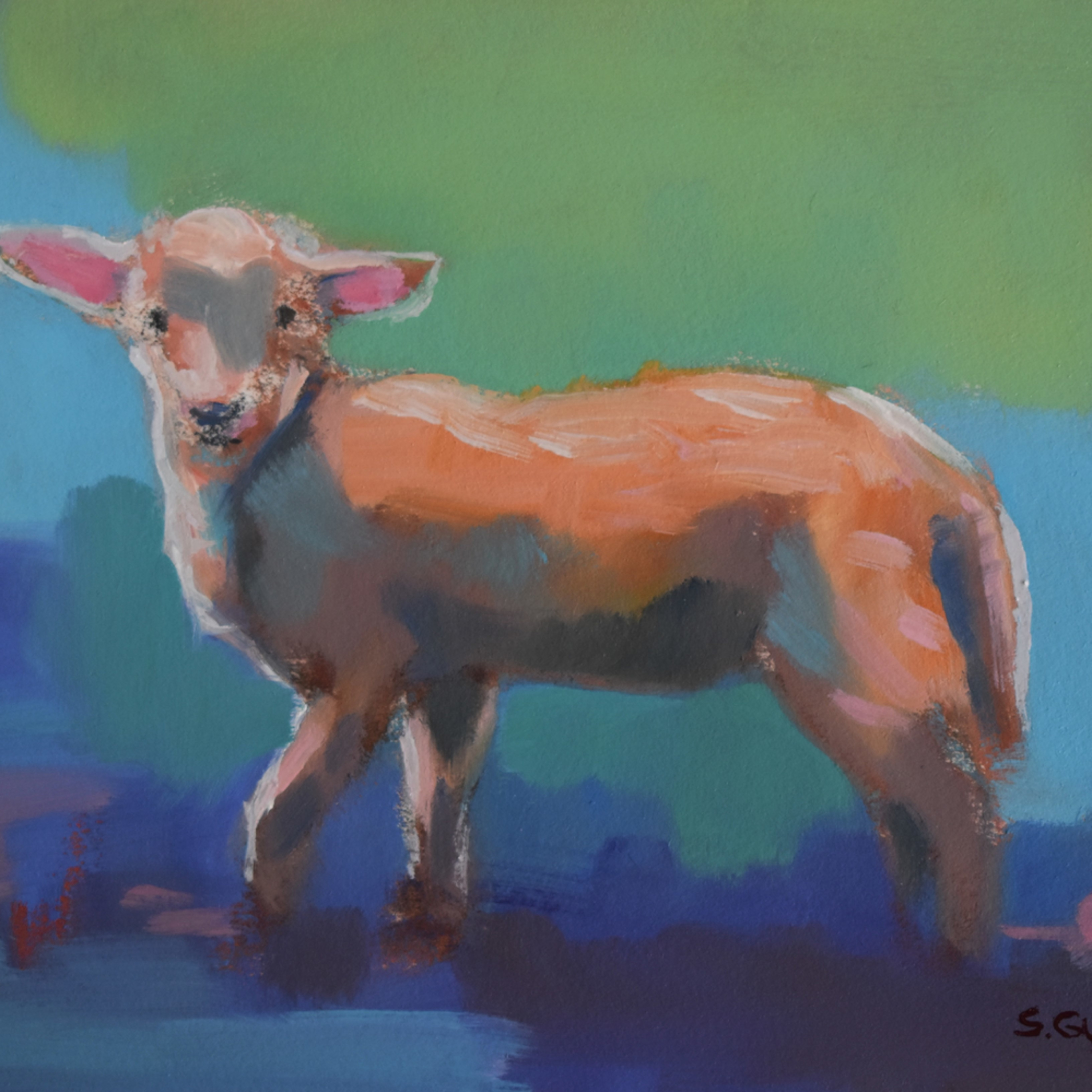 Lamb on blue gvpwxu