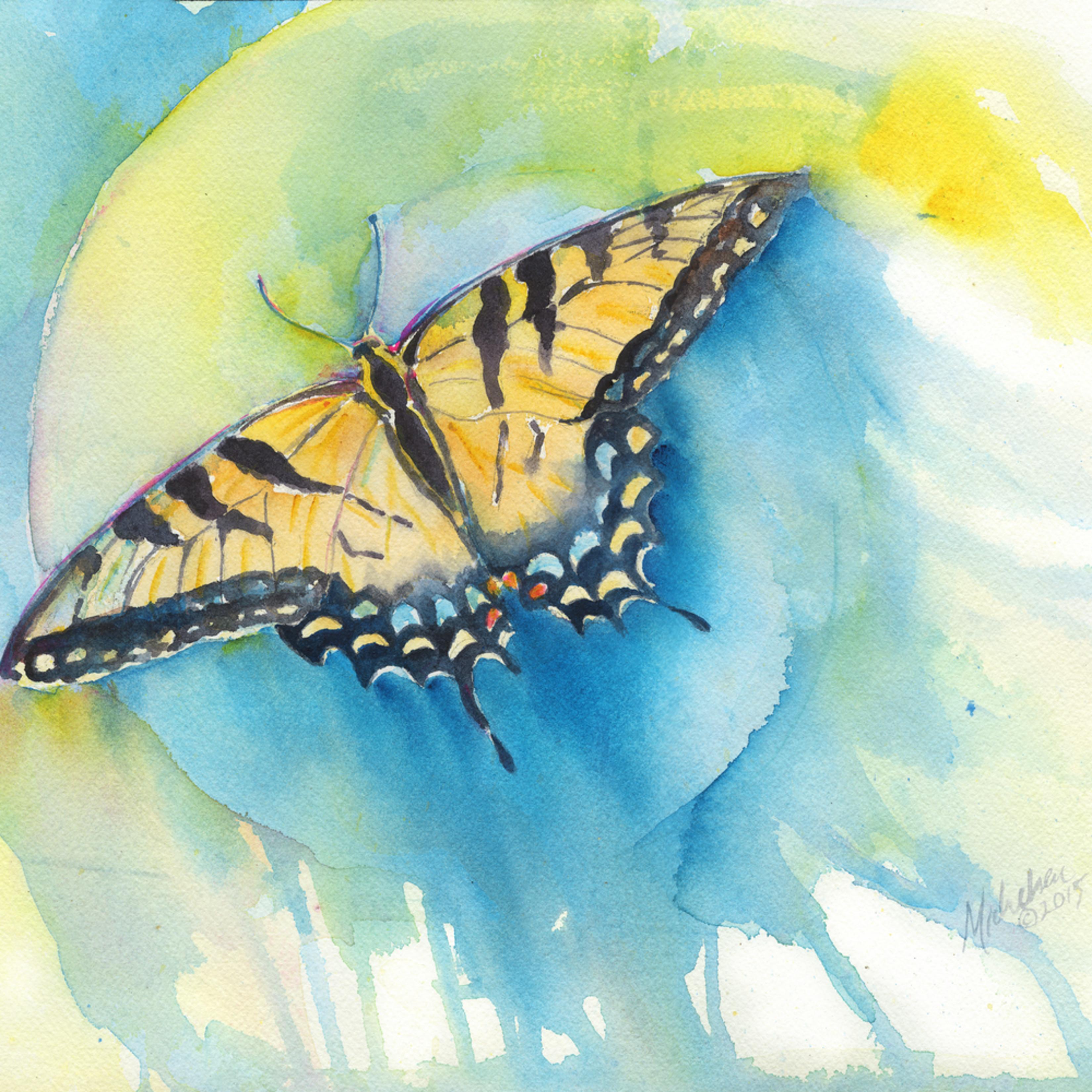 Mickelson butterfly final occlae