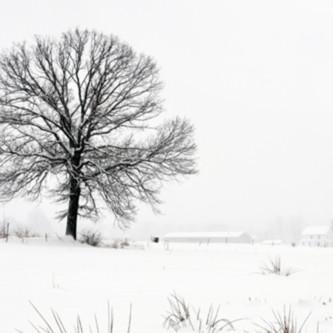 Pennsylvania winter vista   michael sandy mctya8