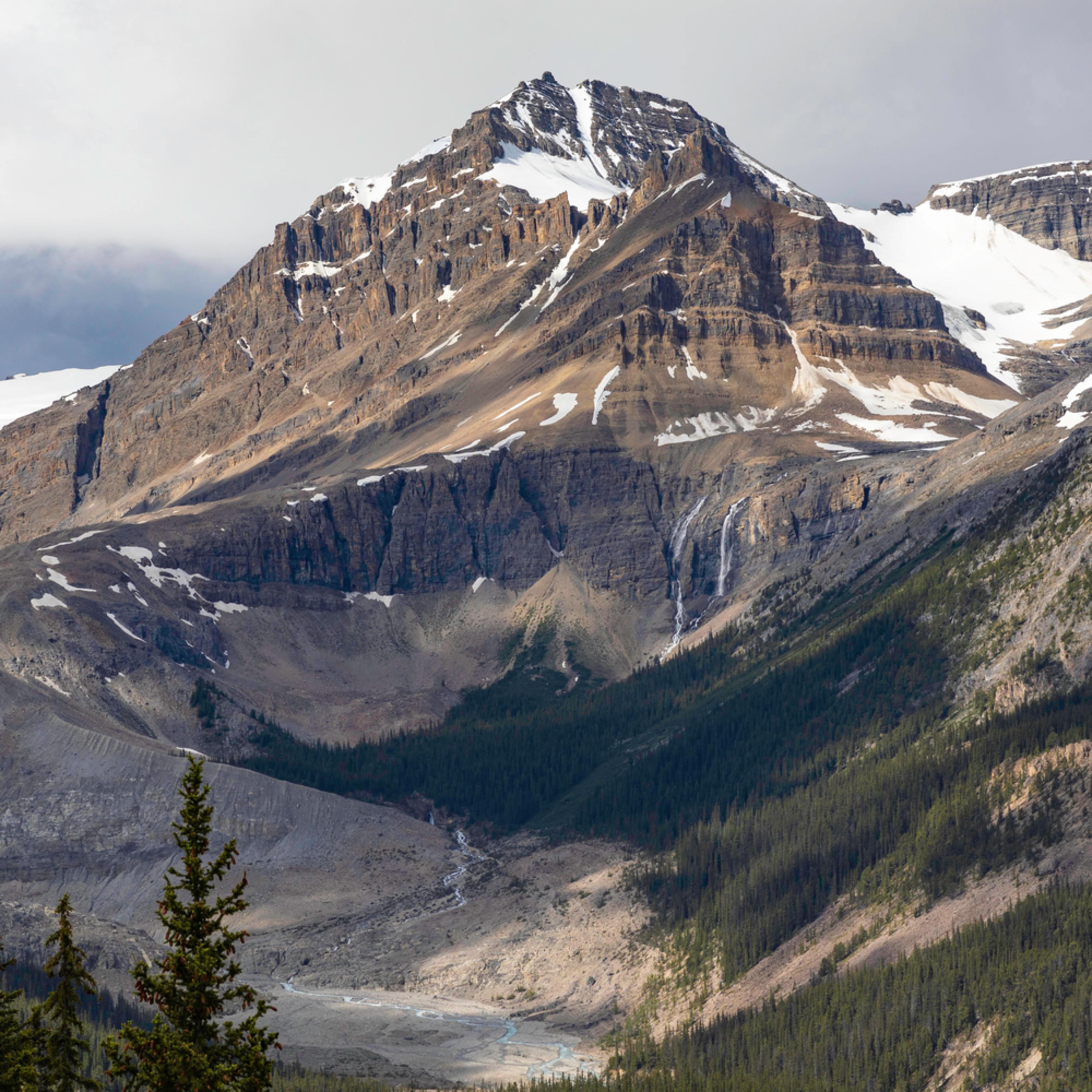 Peyto glacier svpbzb