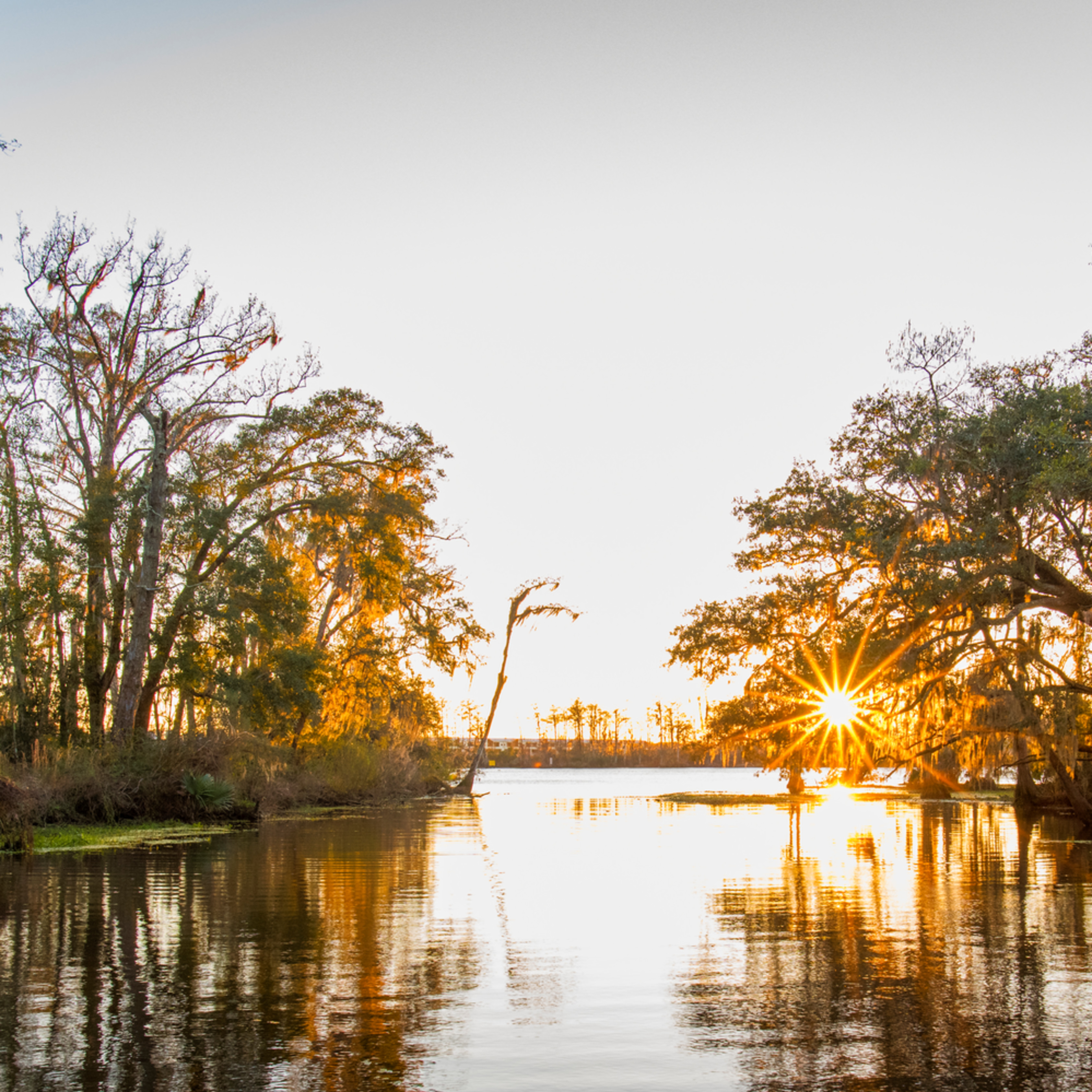 Andy crawford photography fairview riverside state park tchefuncte river 2 w1osof