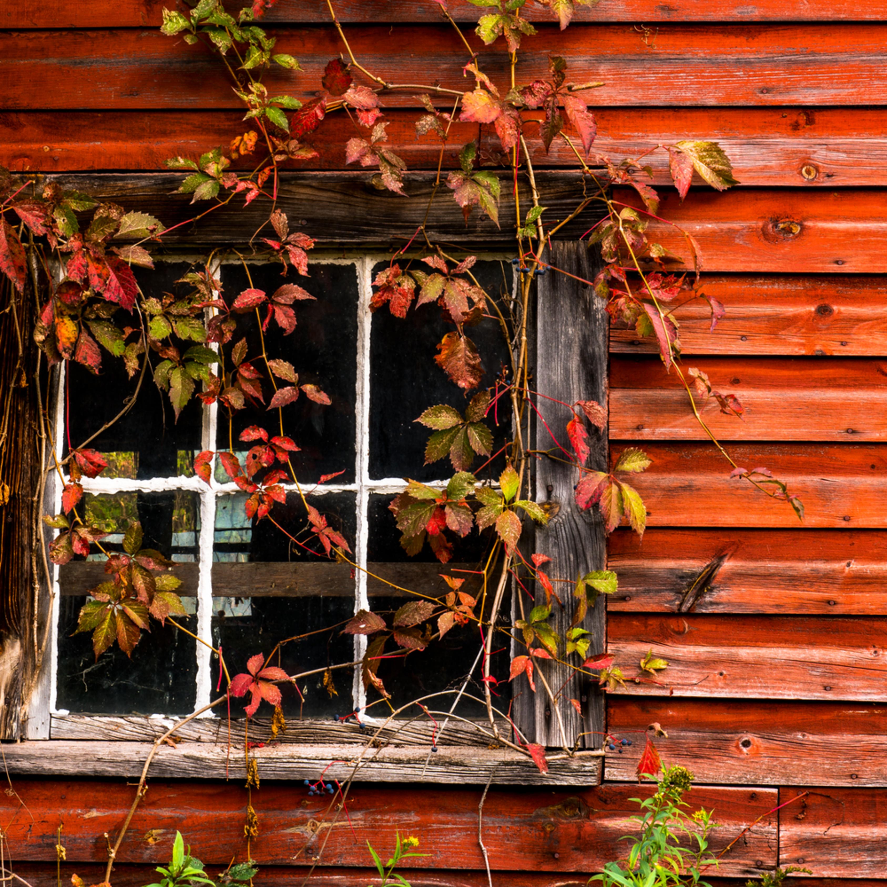 Rustic barn 3 uz9fht