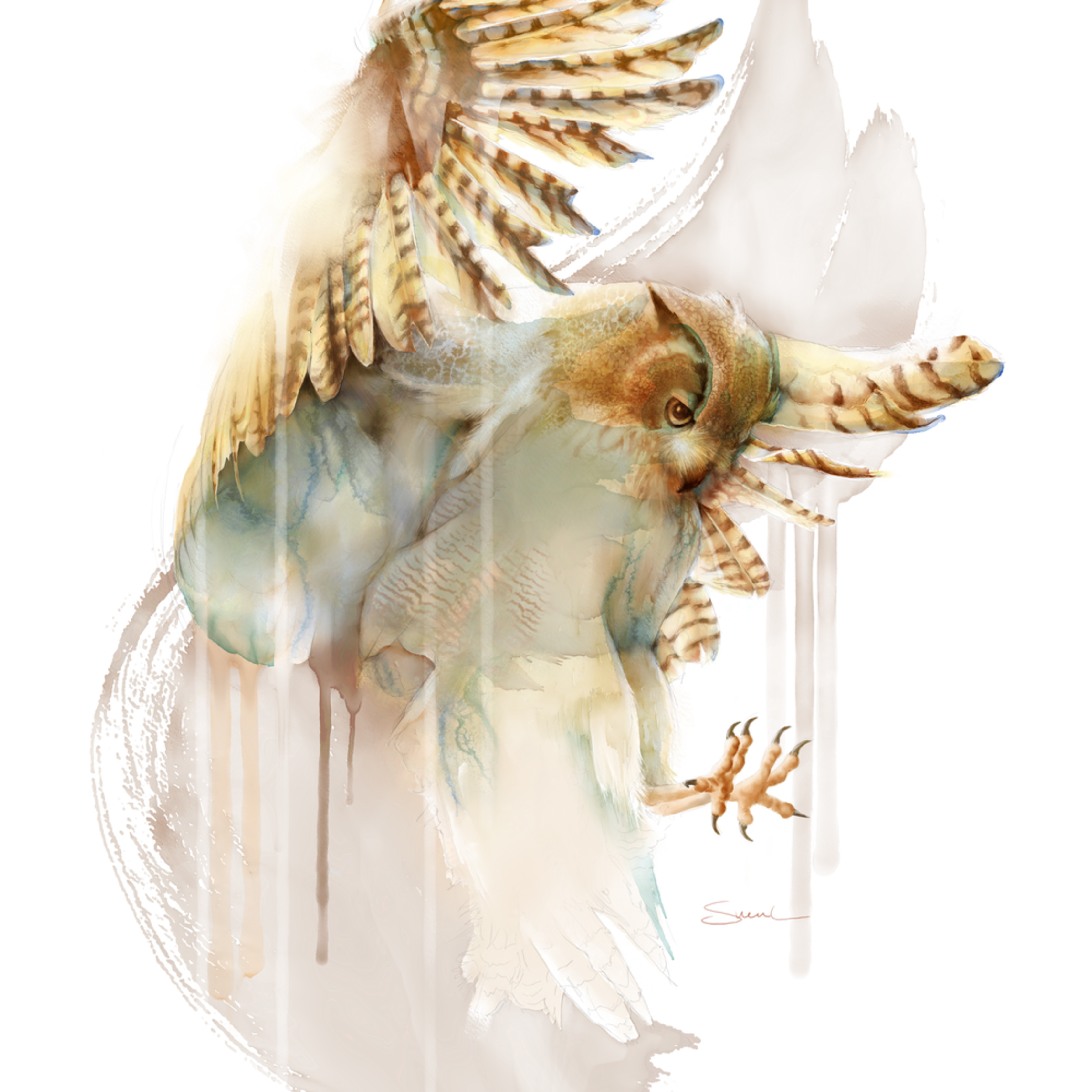 Owl 2 mixedmedia hmoce6