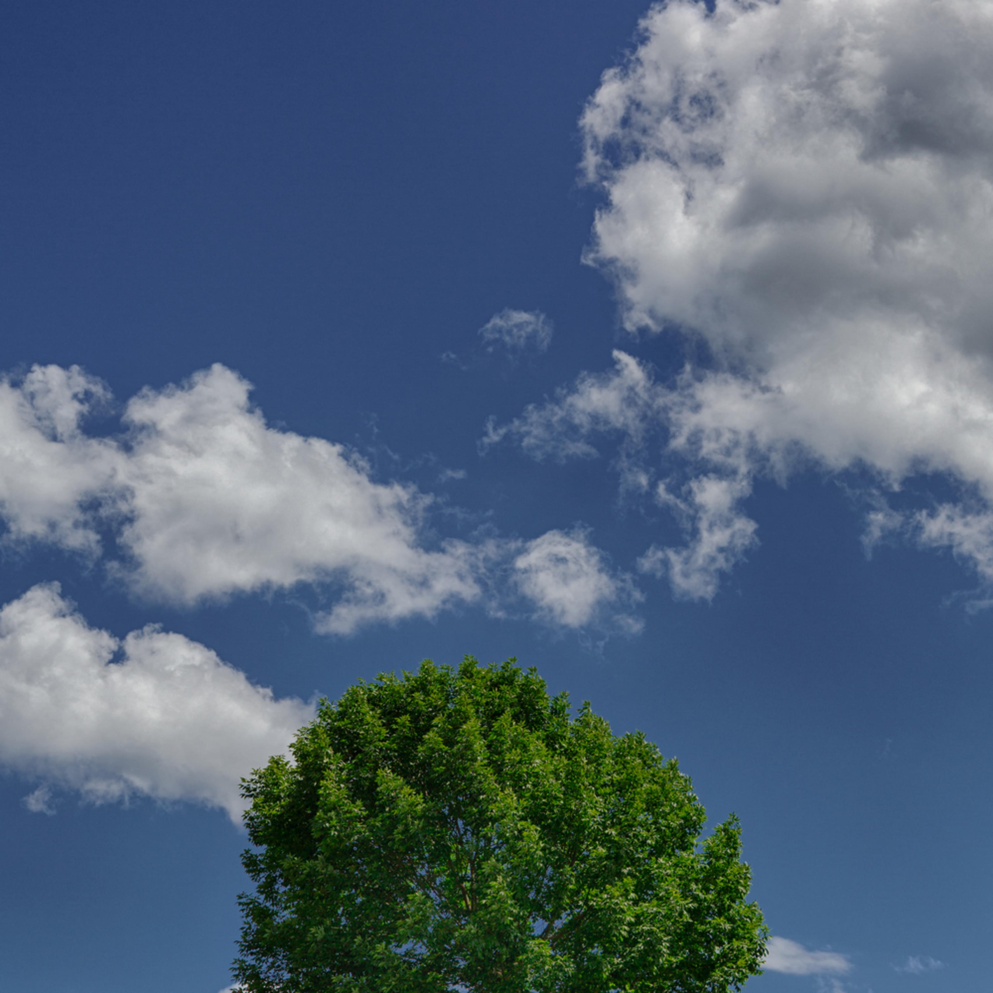 Lone tree hill urphw5
