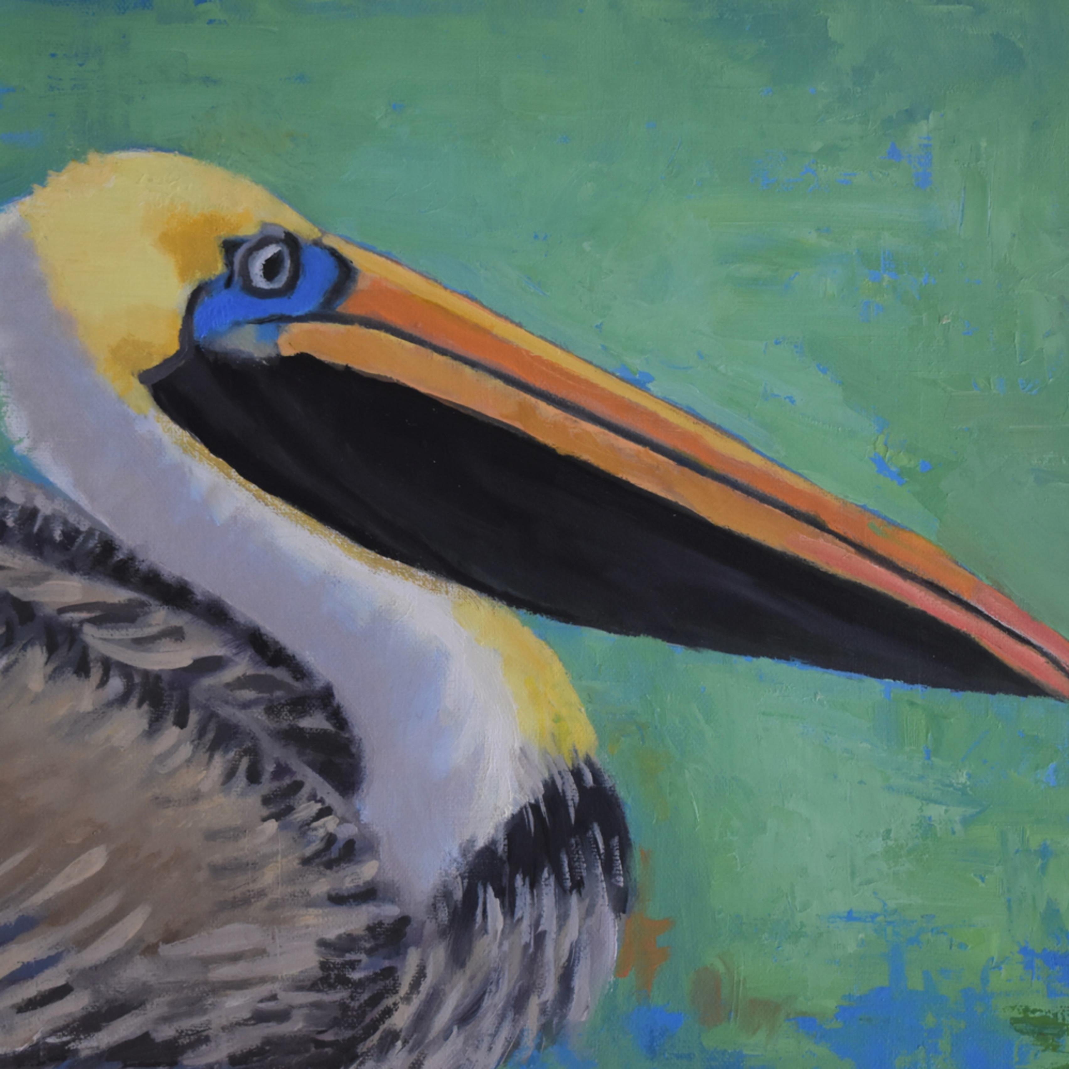 Pelican on green upxqz6