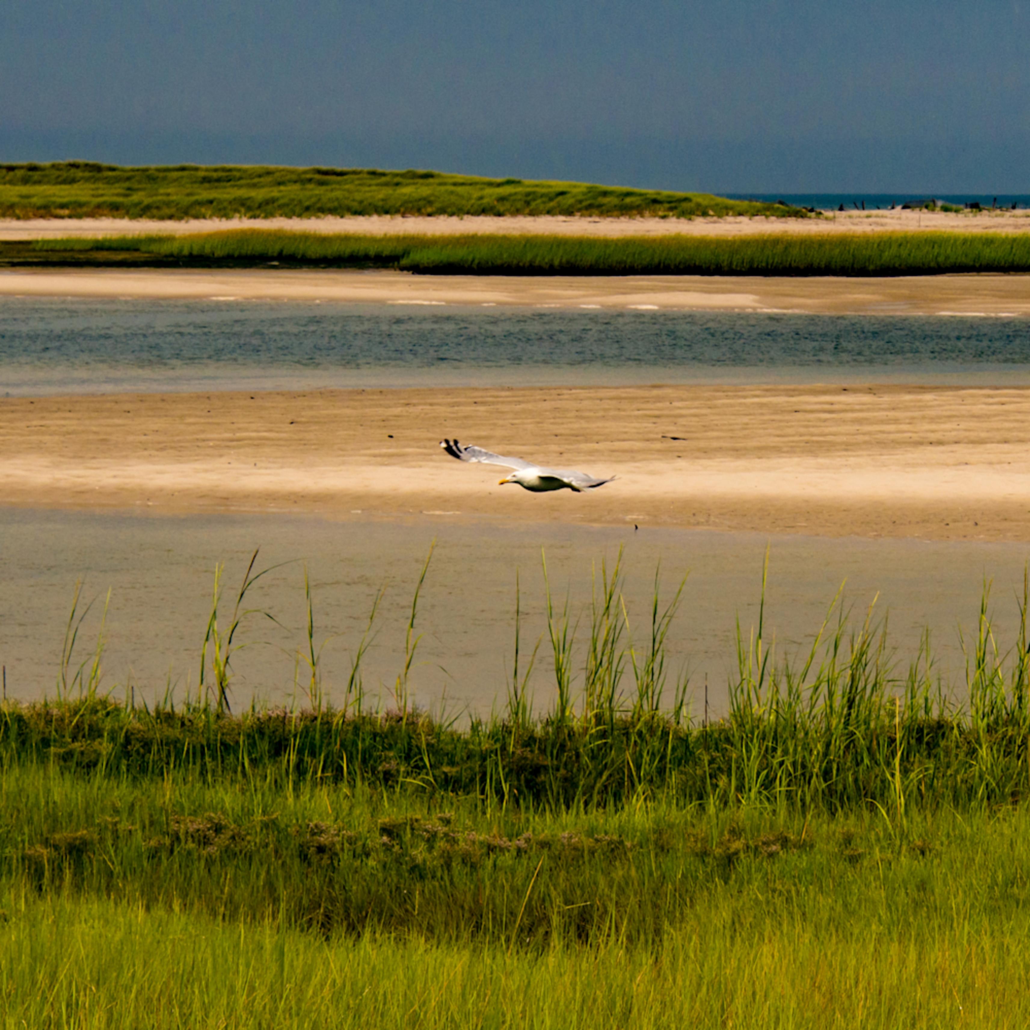 Cape cod 7 2012 11 a4ahmz