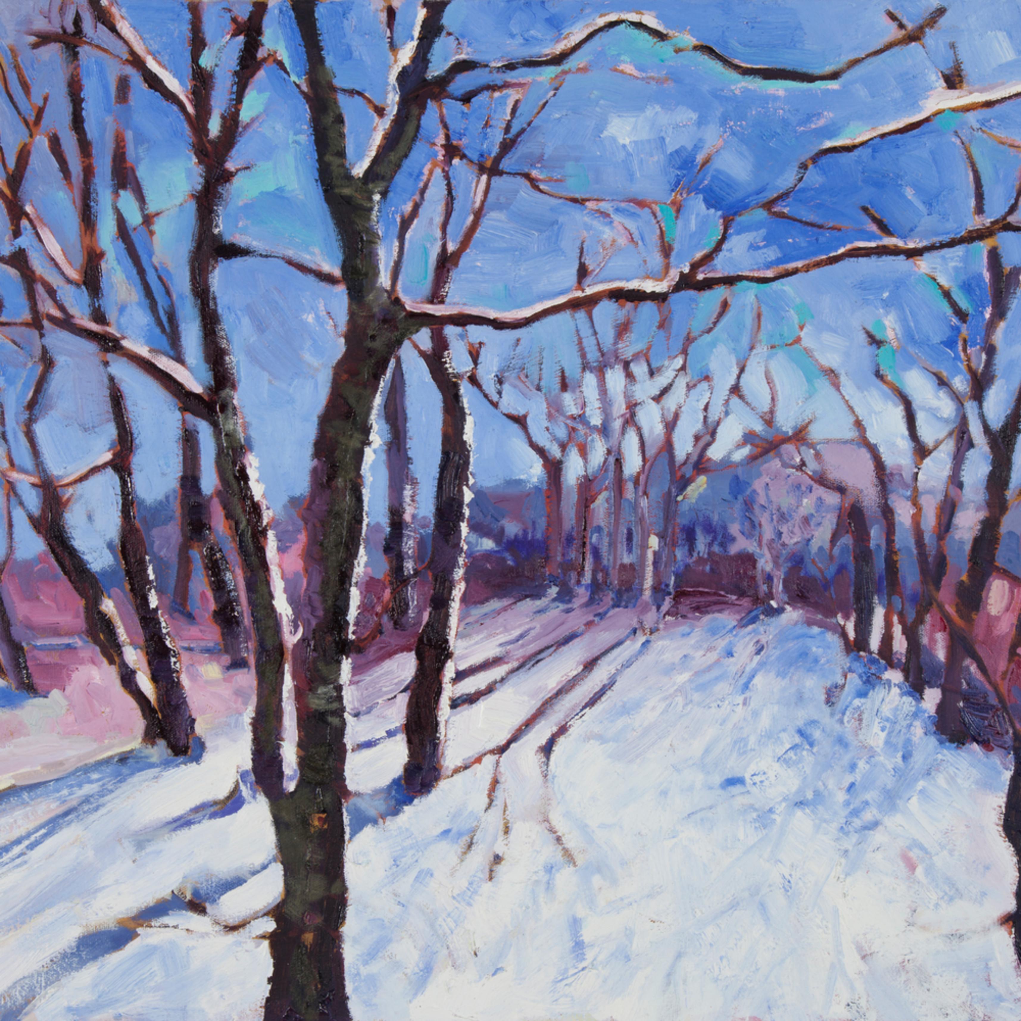 Winter stroll ys9oot