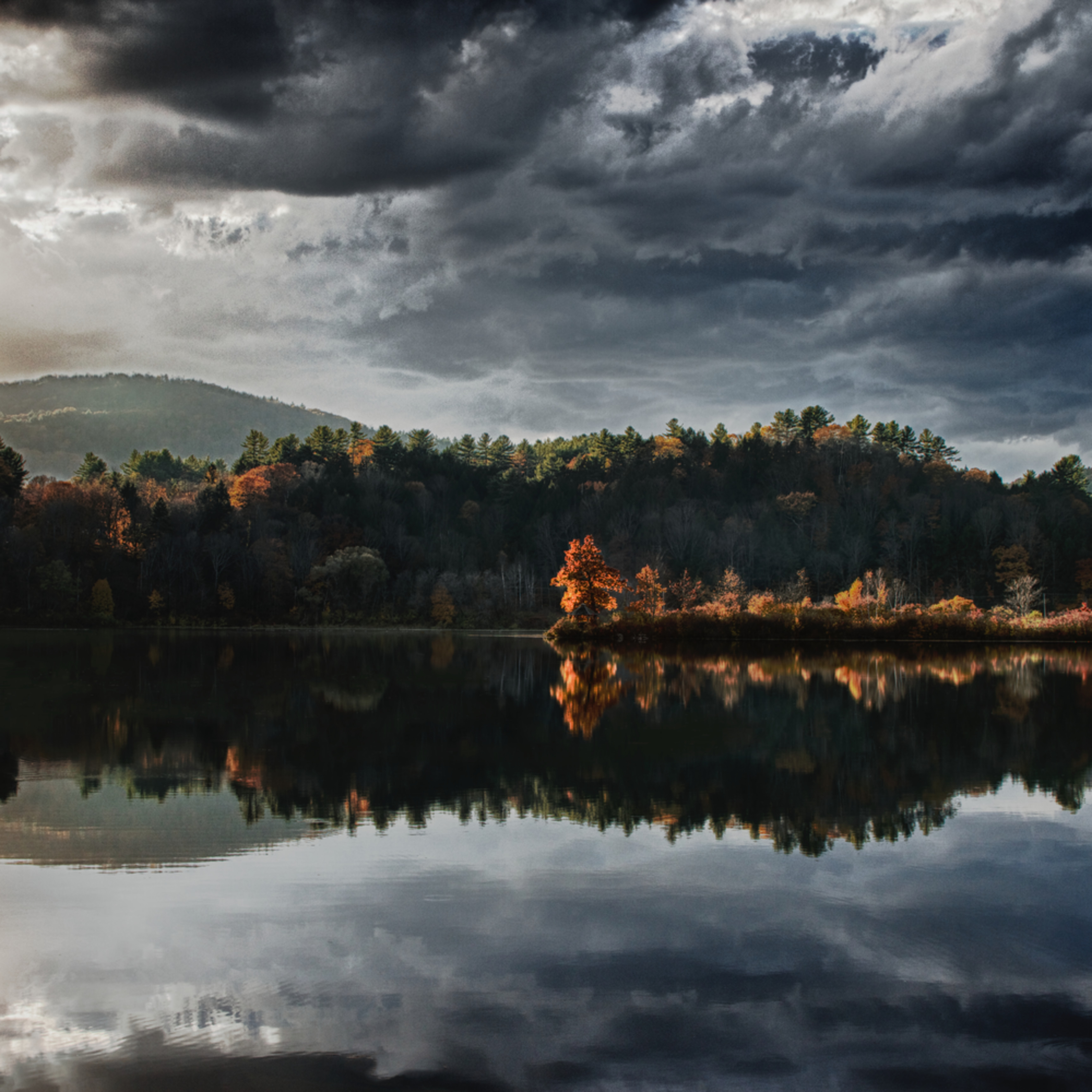 Last light of fall ggyl2t