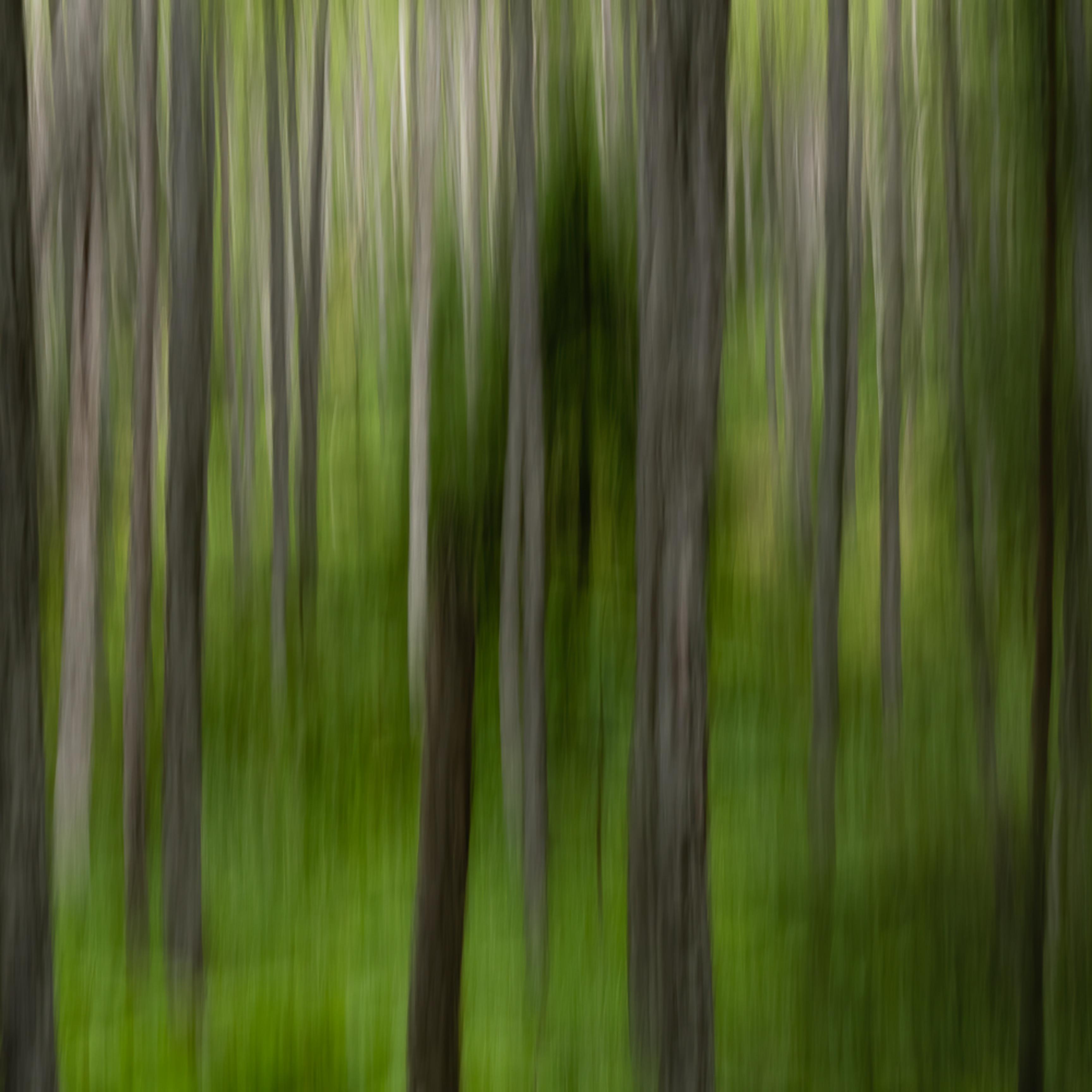 20200719 motion blur em10494 artstorefronts nnae5g