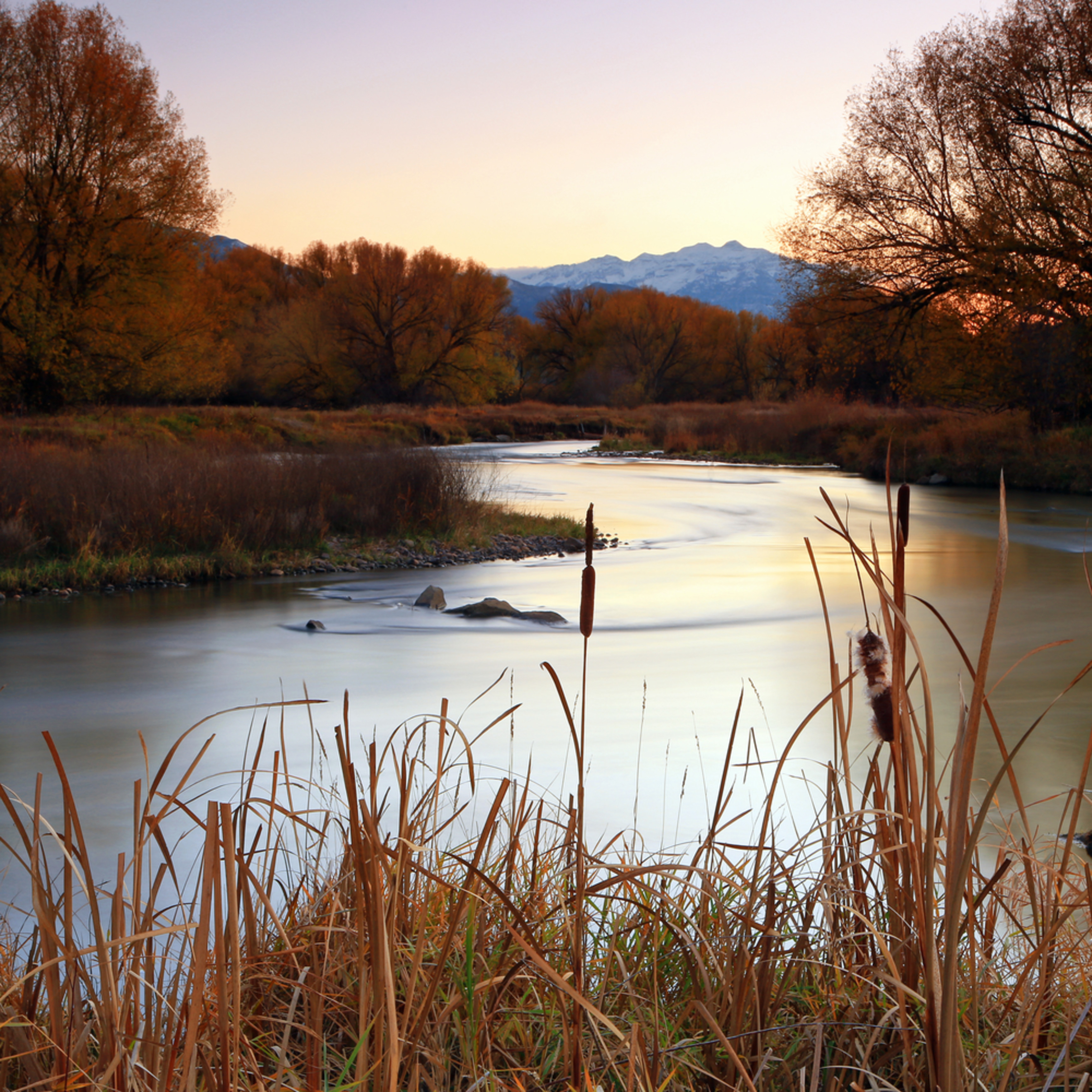 Autumn on the provo river f7grdy