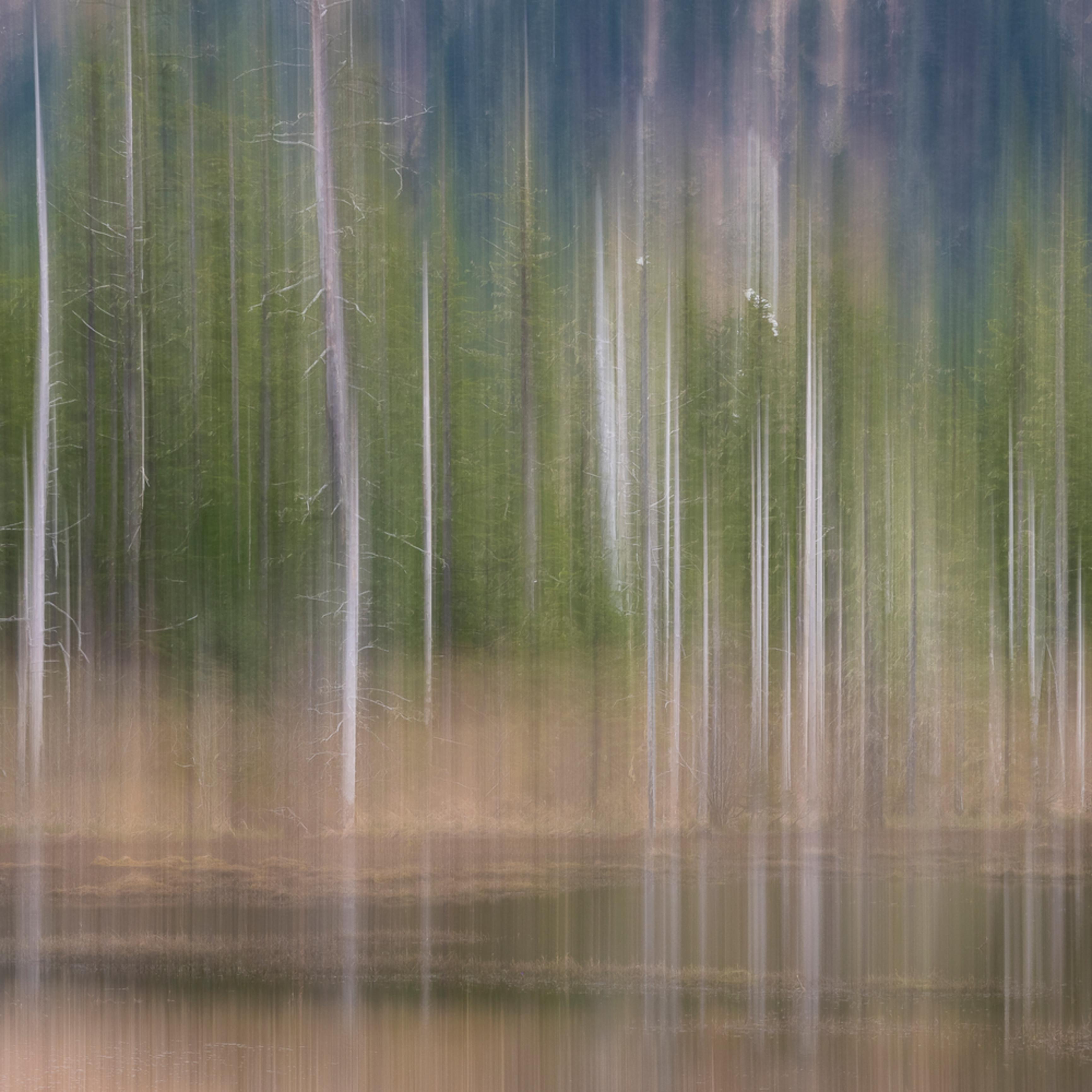 20190502 chugach national forest em13915 artstorefronts trzesv