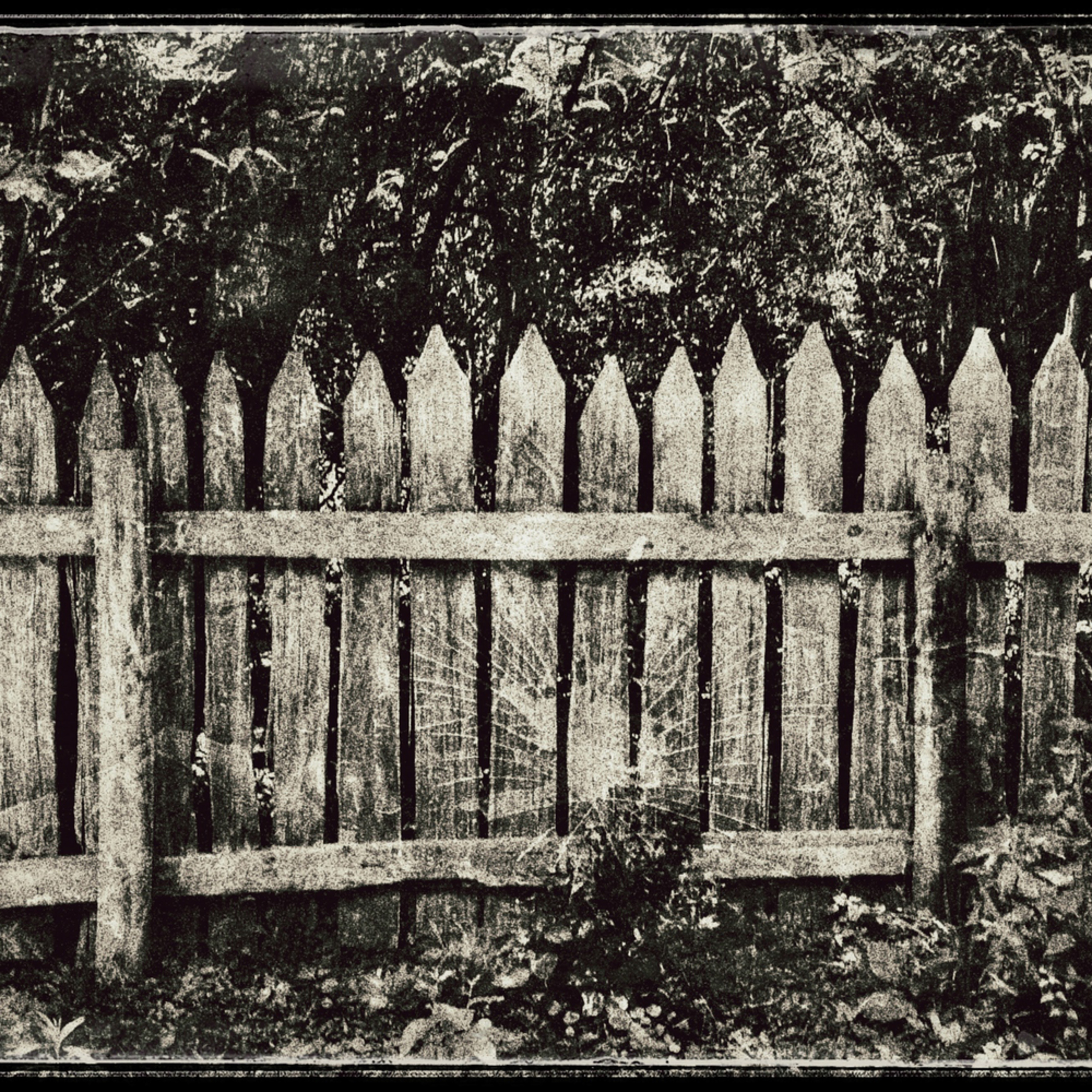 This old fence 0228 ancuv8