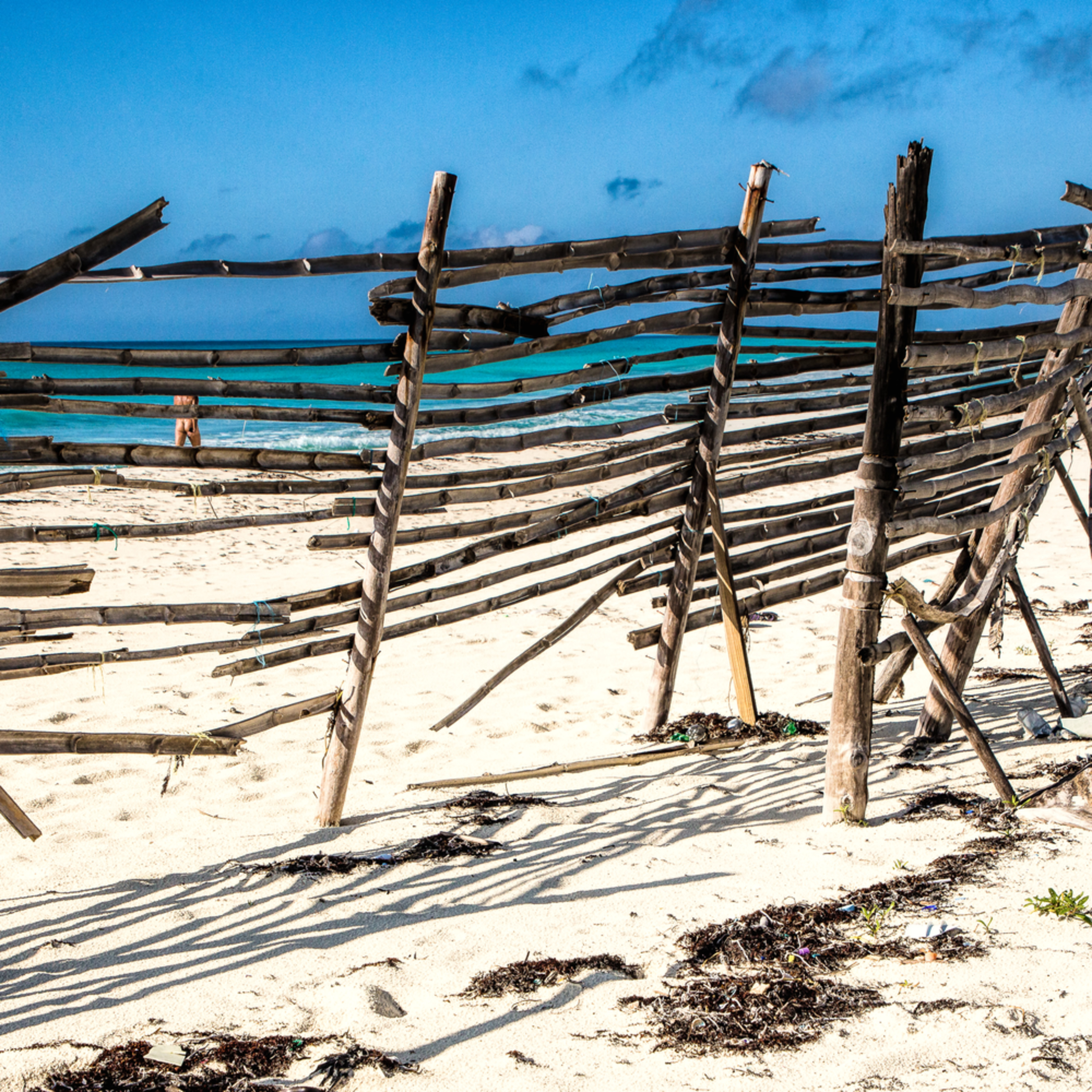 Nudist beach lnc65j