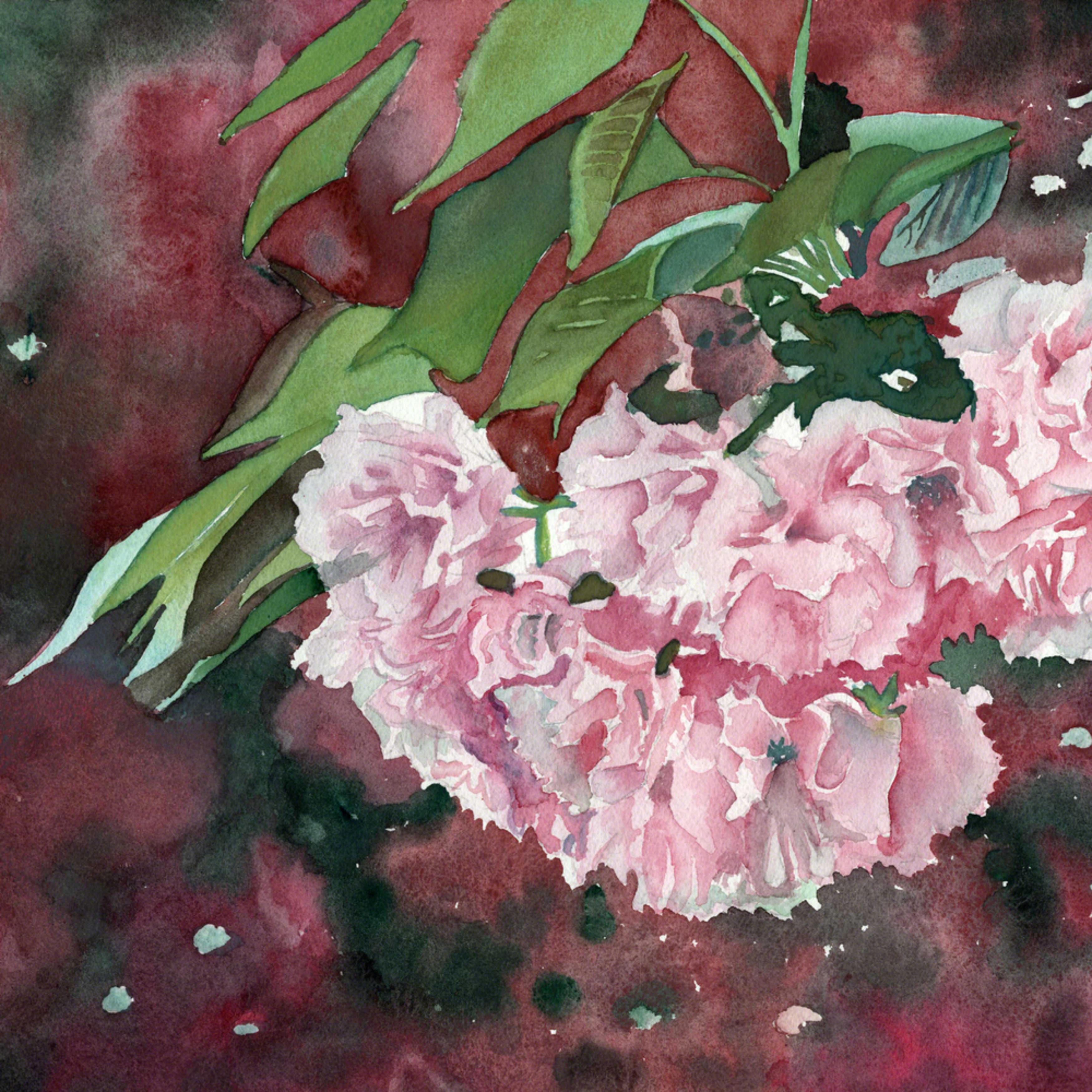 Cherry blossom asf print qhyp0z