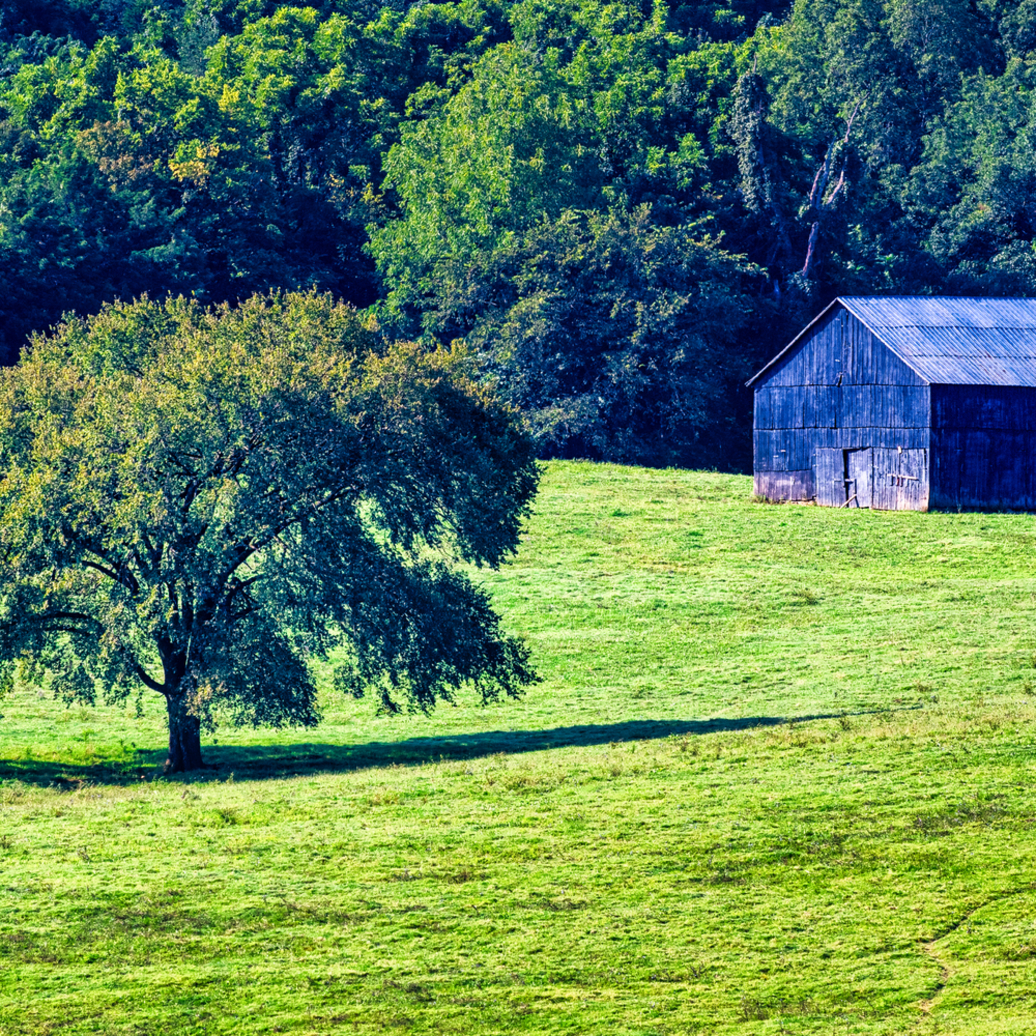 Andy crawford photography lively farms tobacco barn mgrlnt