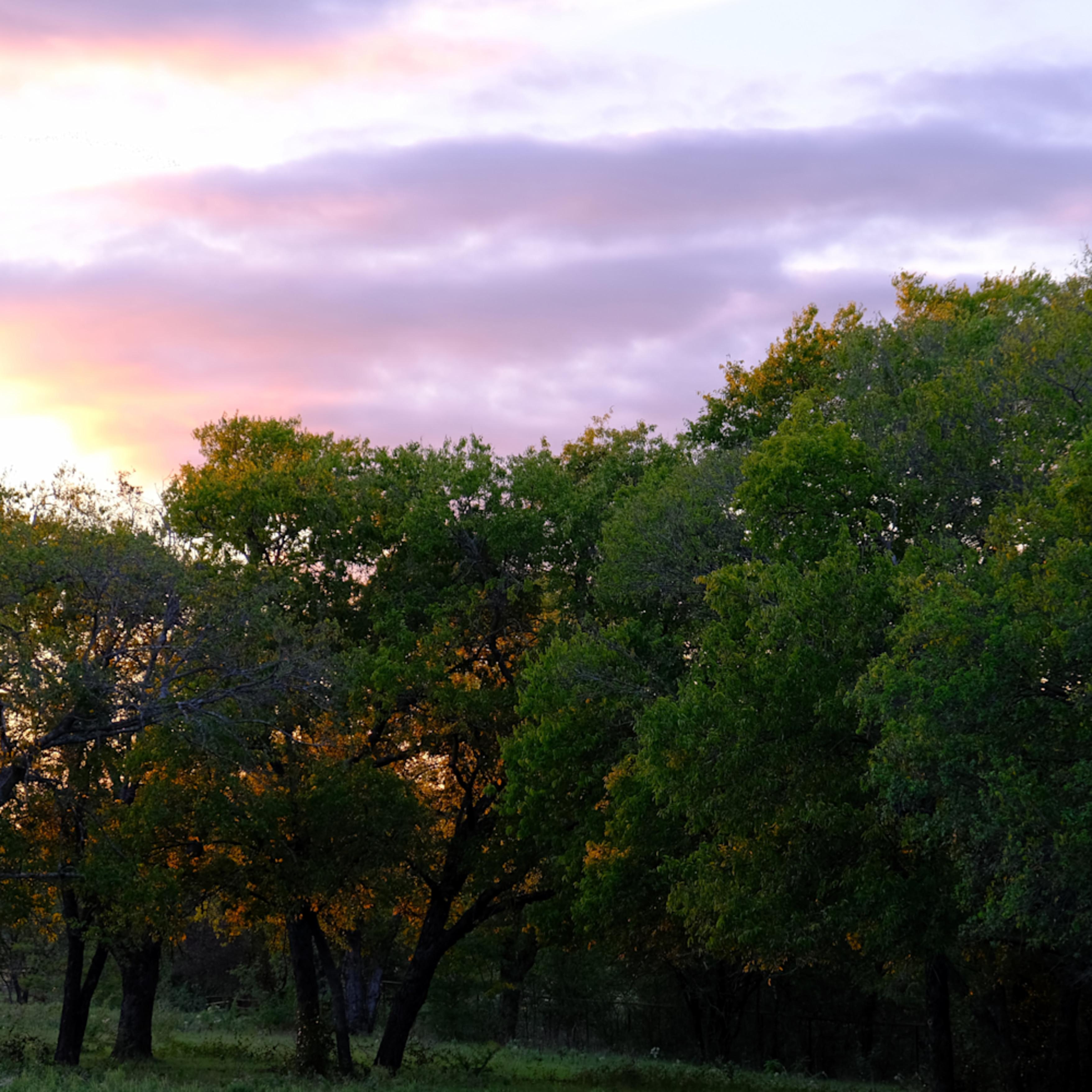 Sunset over texas 44 nelqin