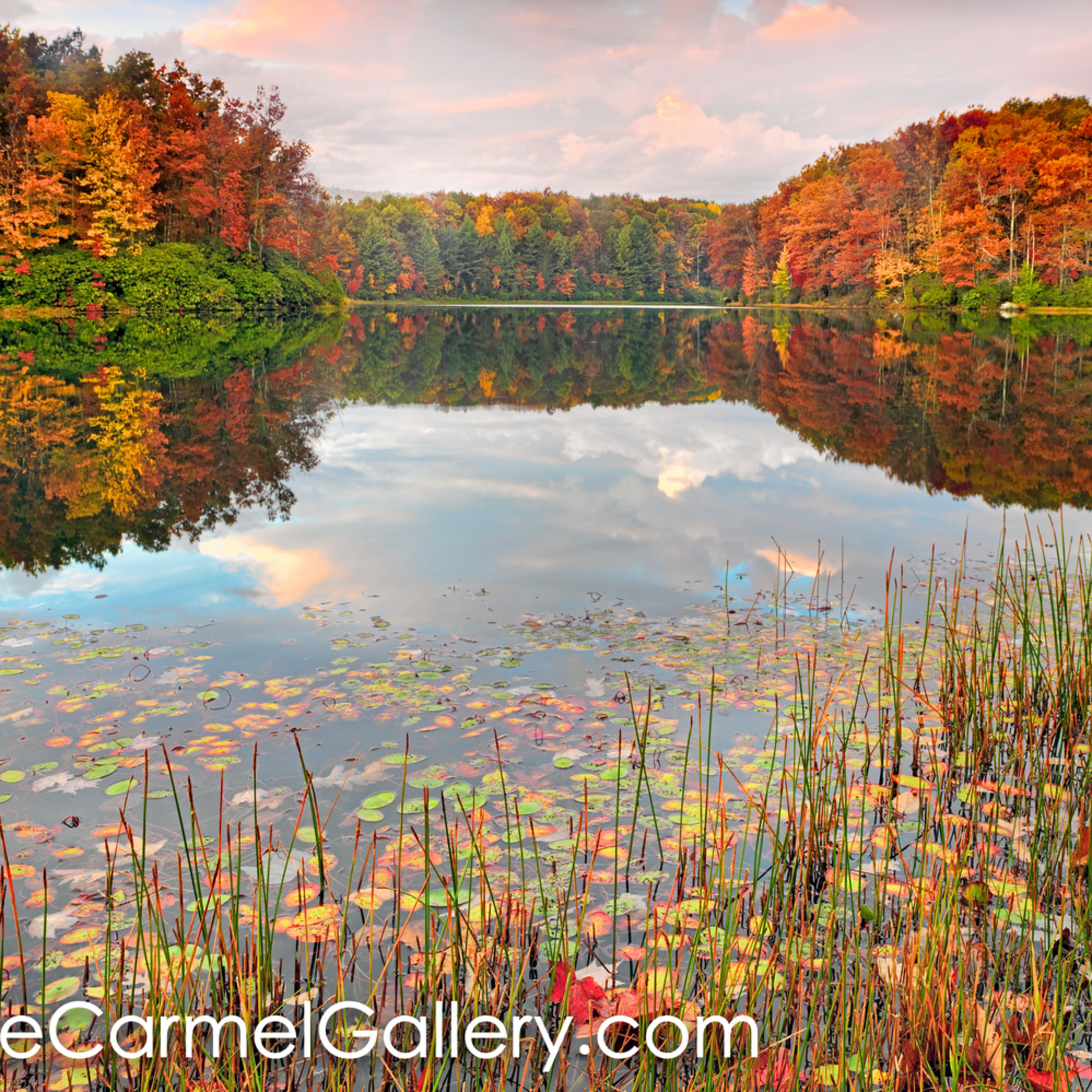 Autumn kaleidoscope vb bbegrm