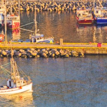 St john fishery c3ivsp