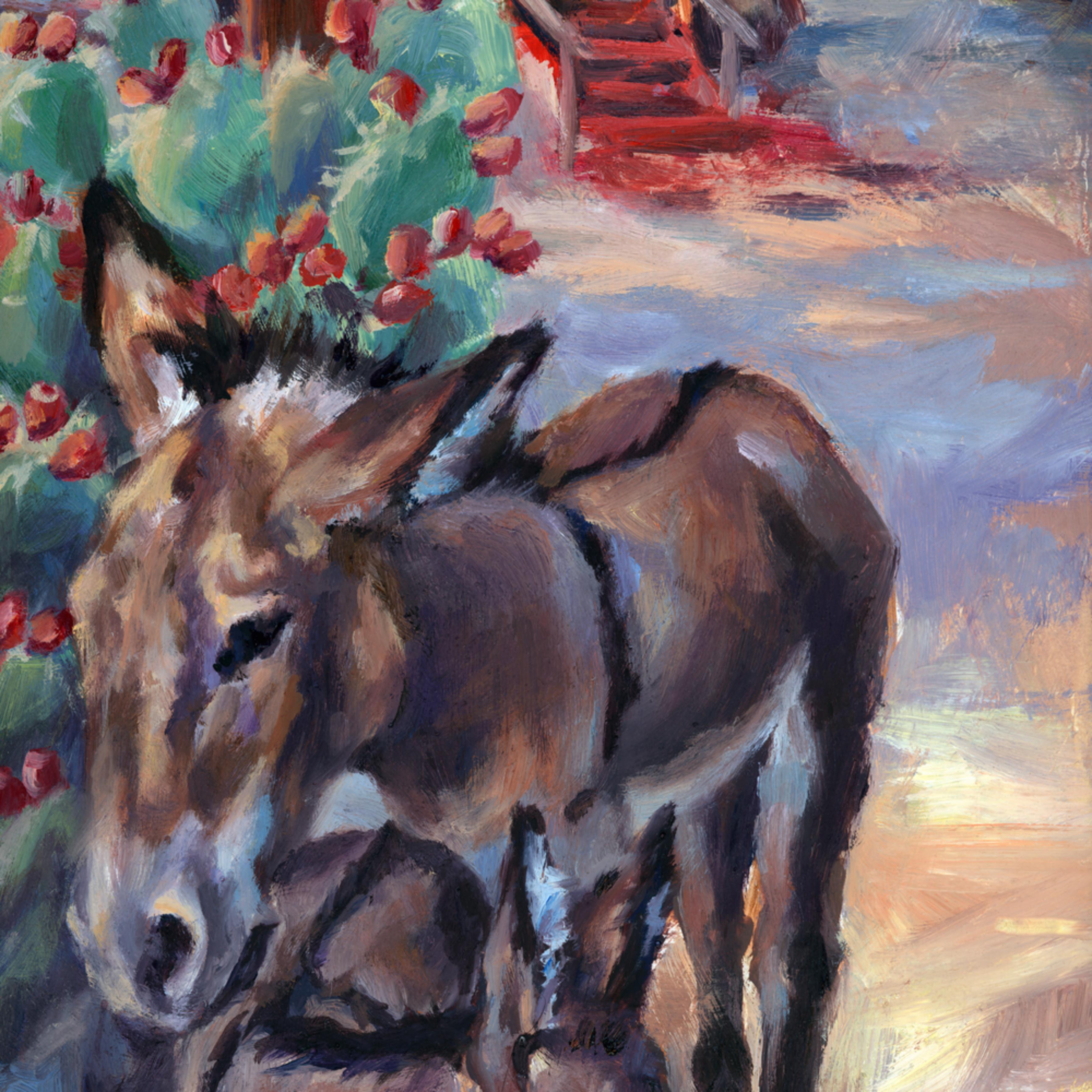 Donkeycapital3 jzbxza