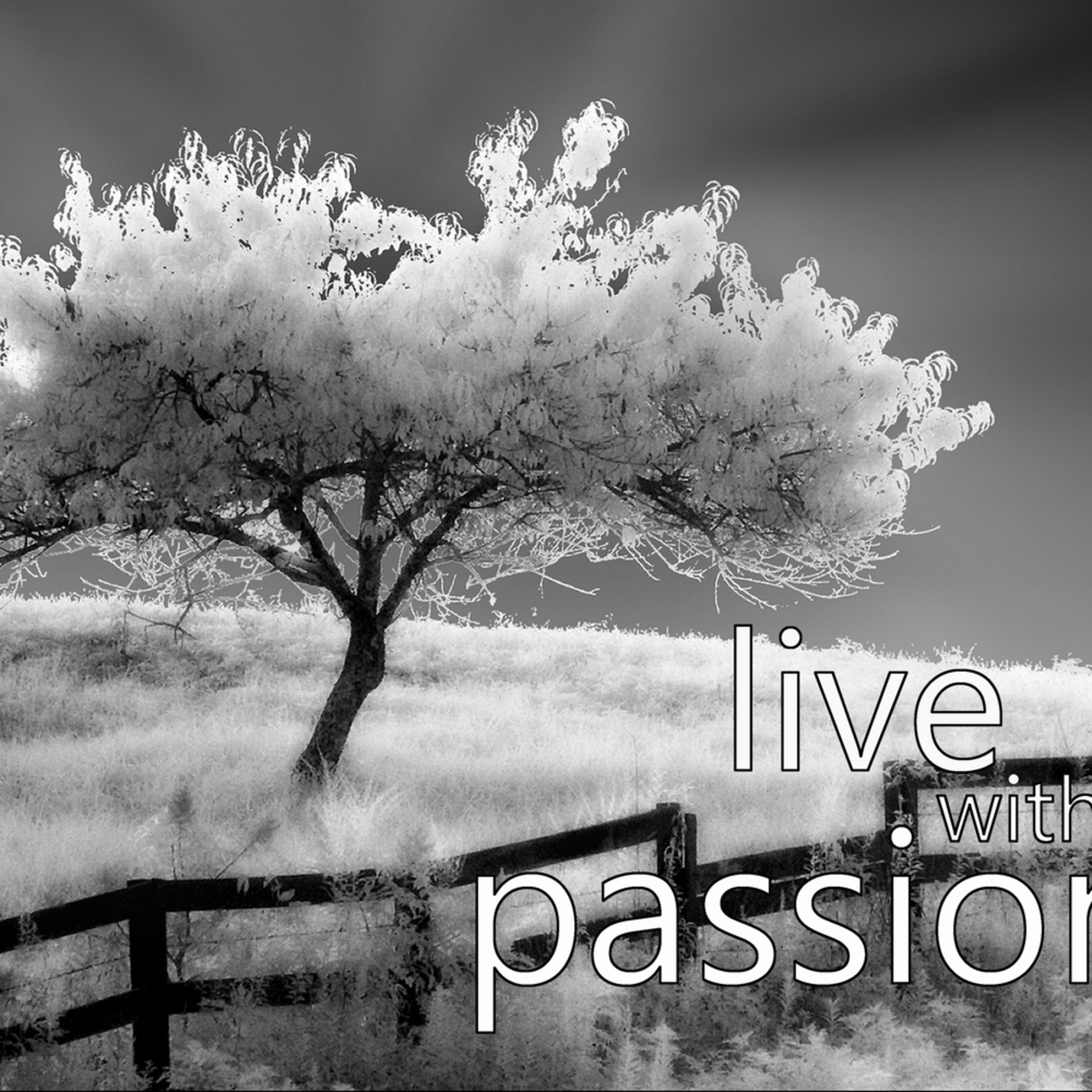 Live with passion hxviri