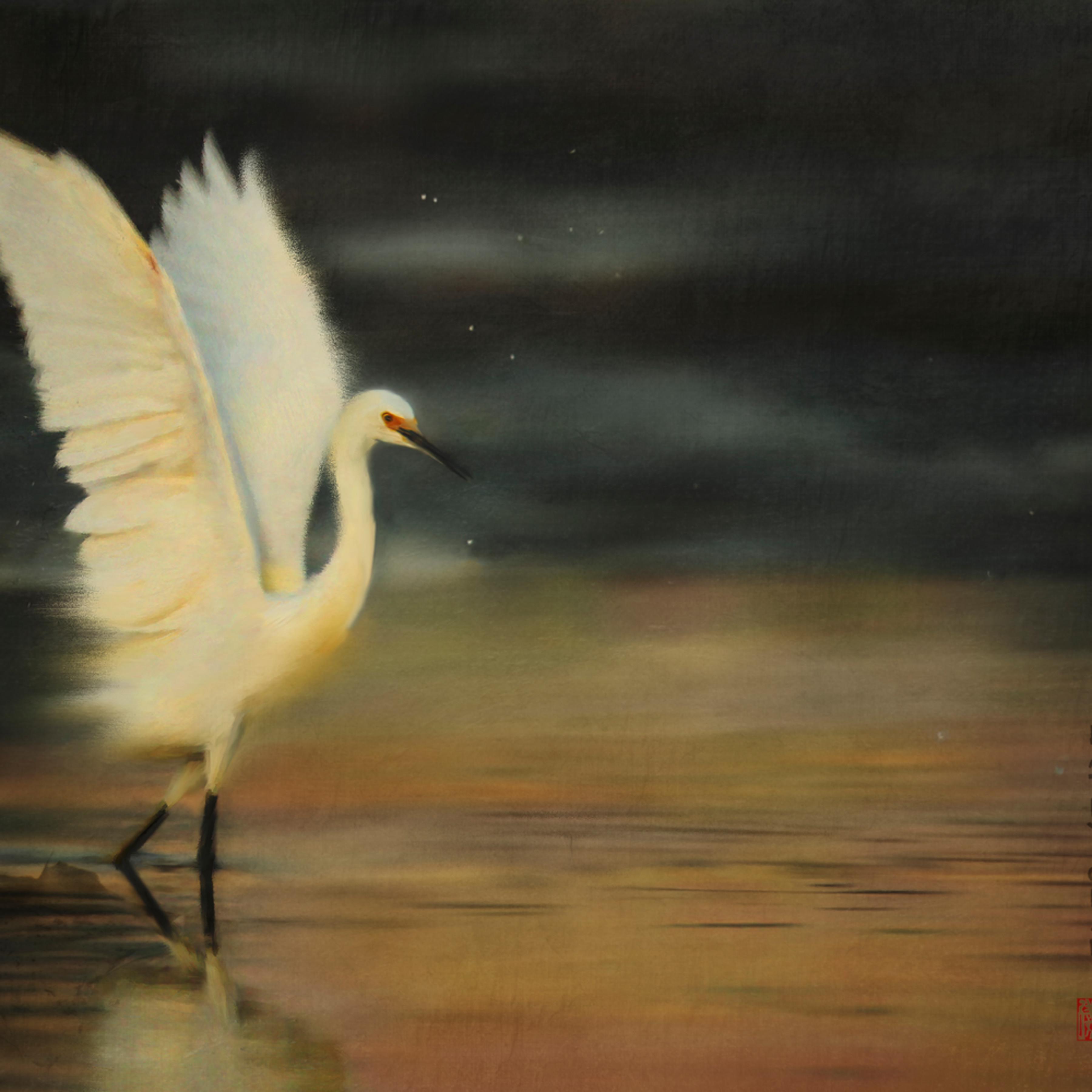 Egret strut gafeqh