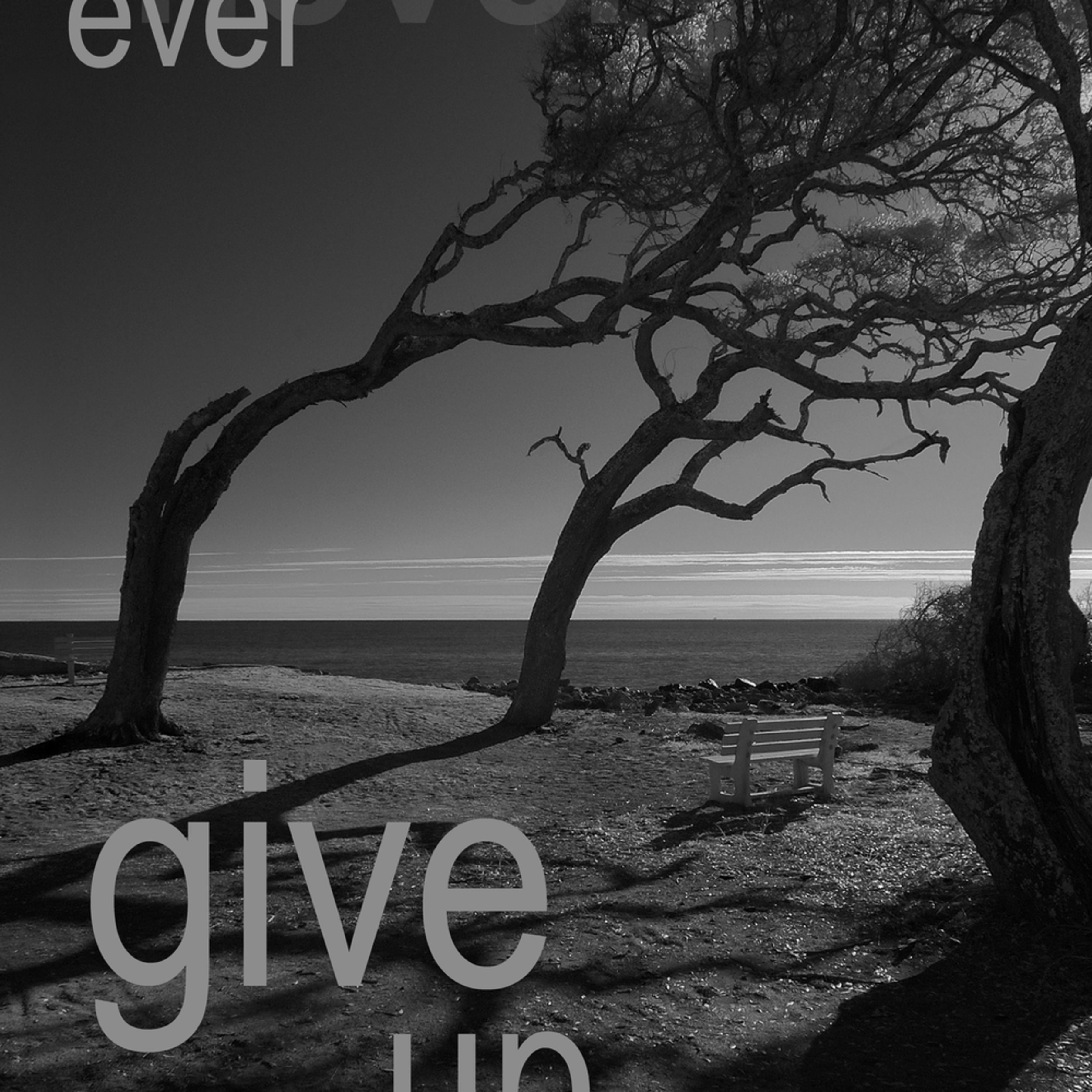 Never give up iiry6u