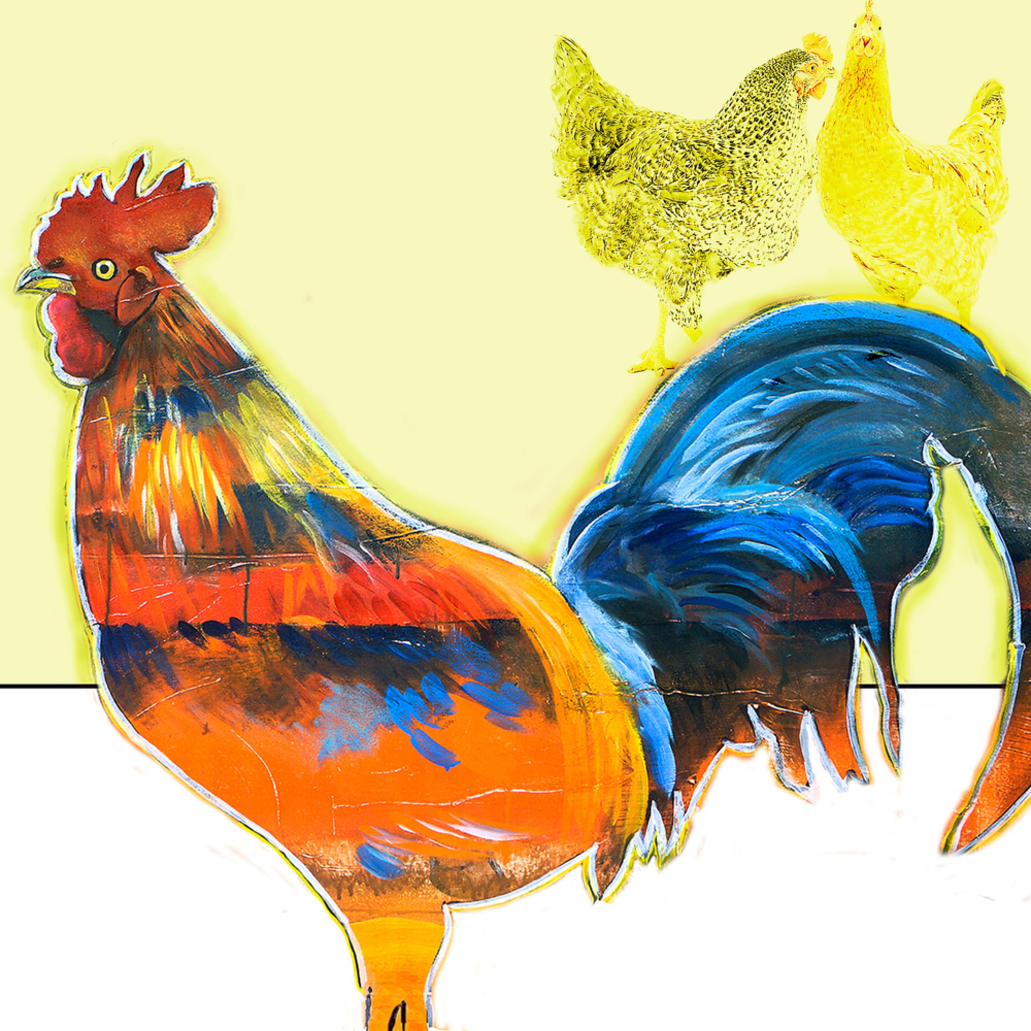 Rooster square b chickens jc22vl