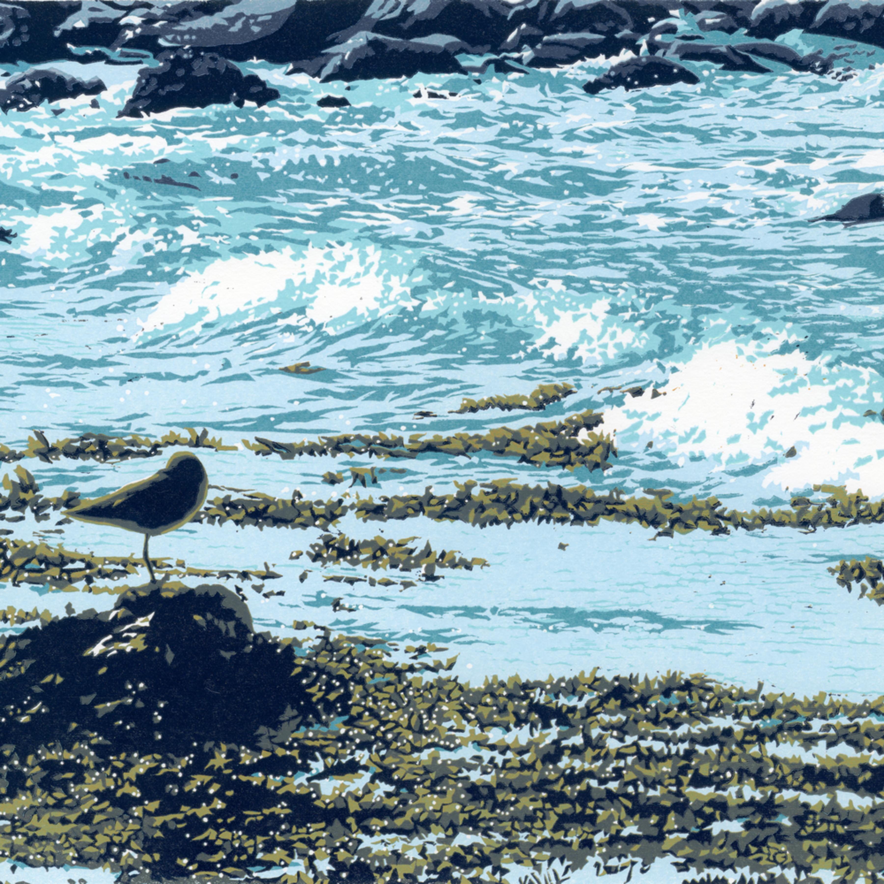 Seaside rest rlinkk