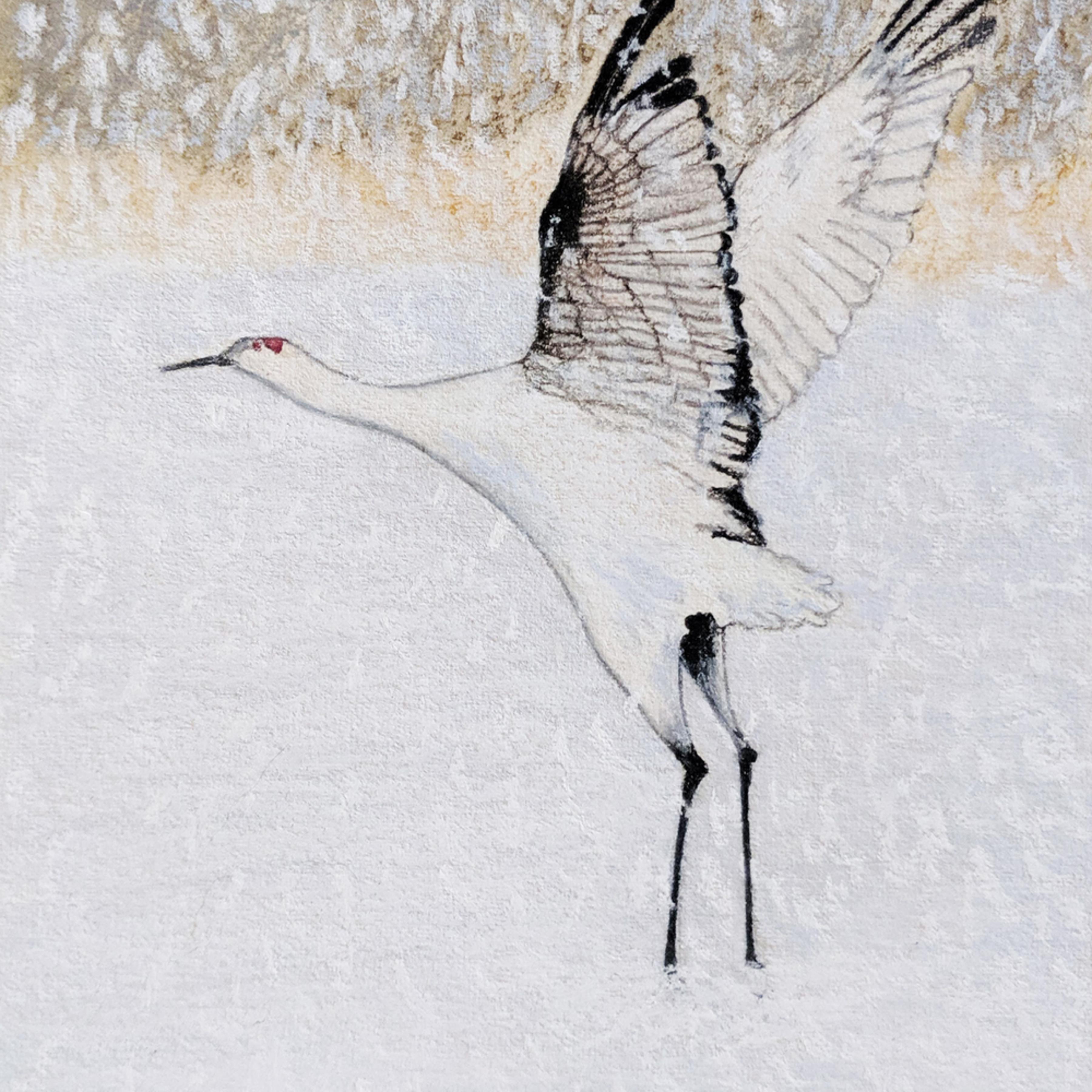 Snow crane 20 x 12 300 zqhsv6