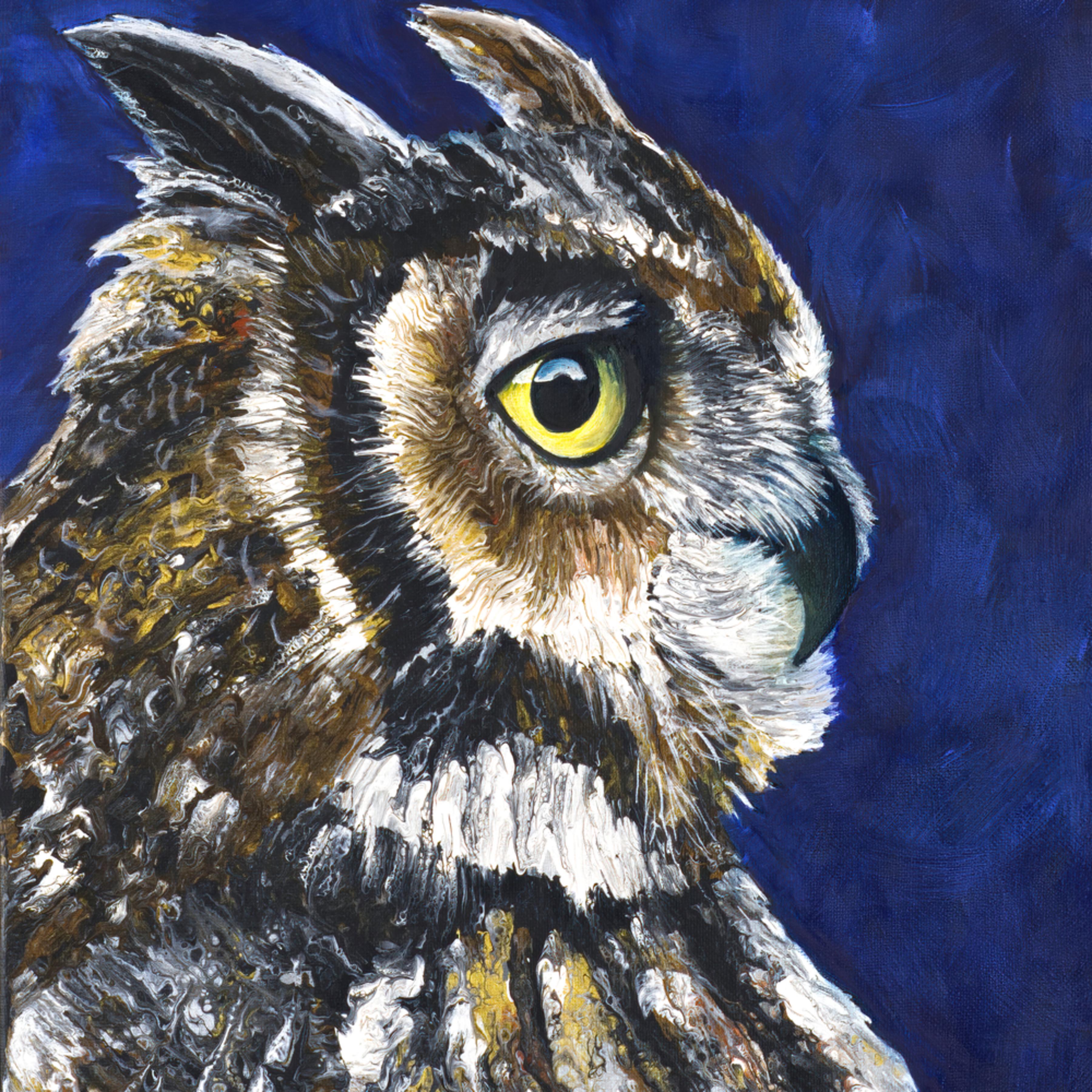 Owl full xyig16