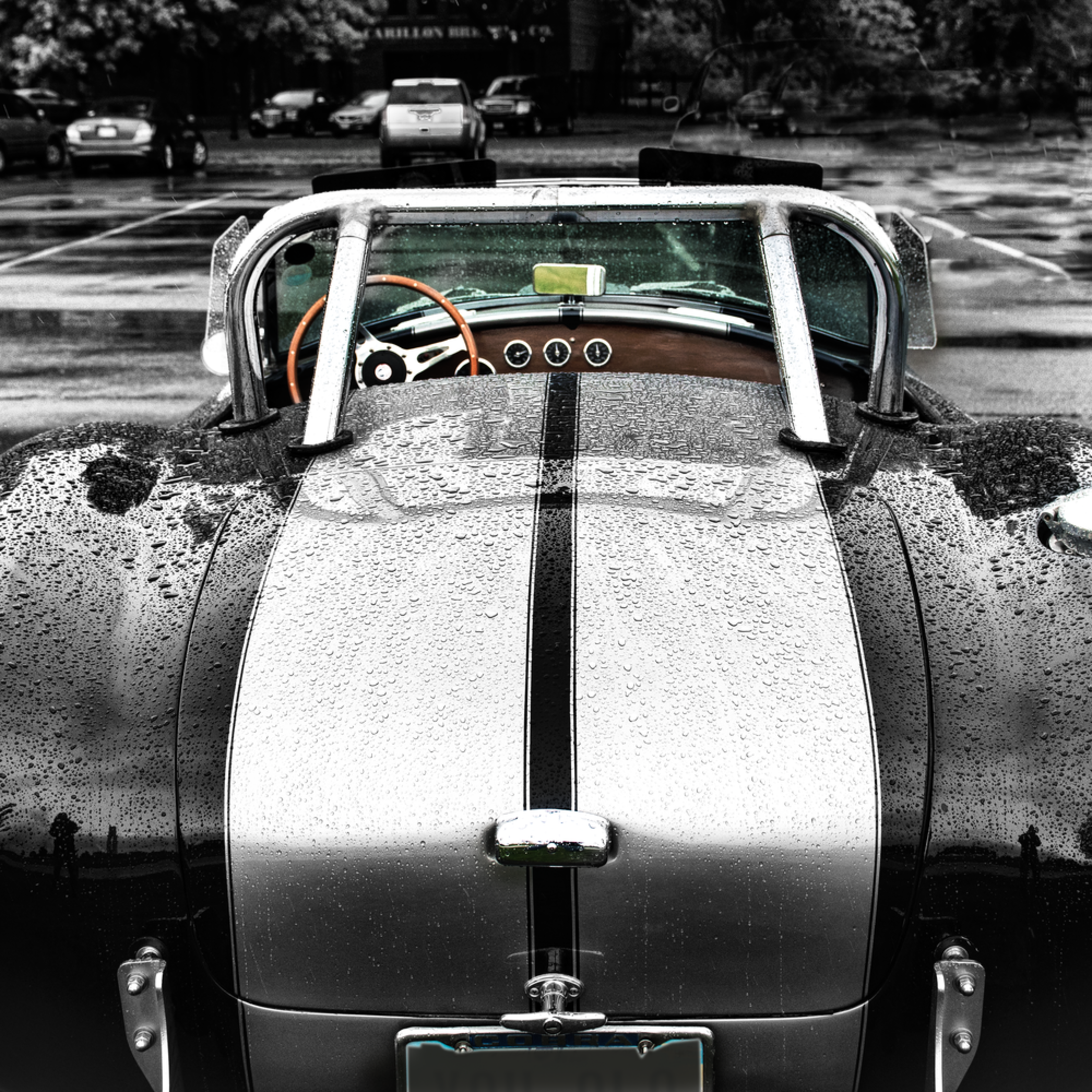 Snake in the rain ac cobra c57so0