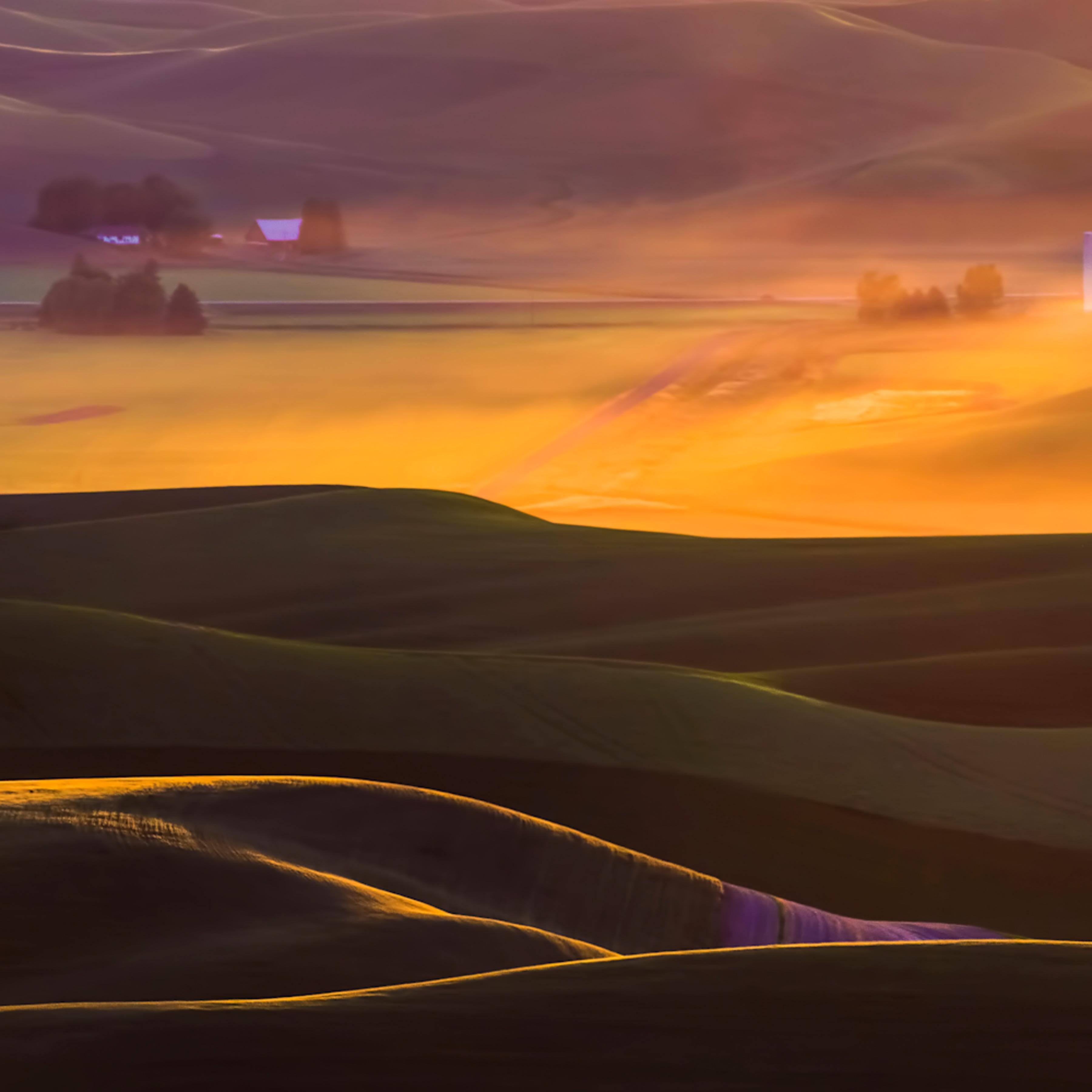 Felice willat   dusty steptoe sunset s2eb8z
