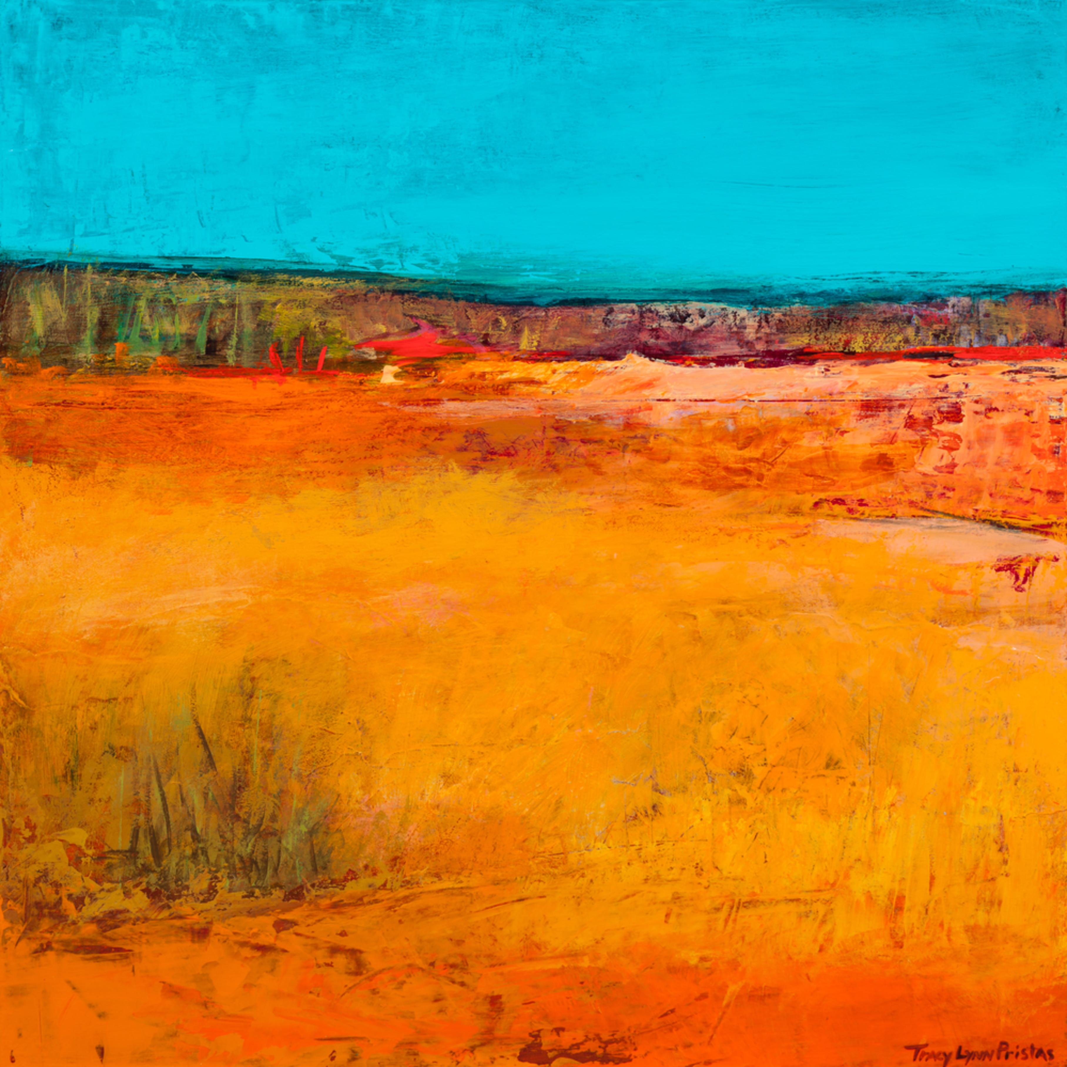 Tracy lynn pristas abstract landscape paintings  playa artist residency erzycn