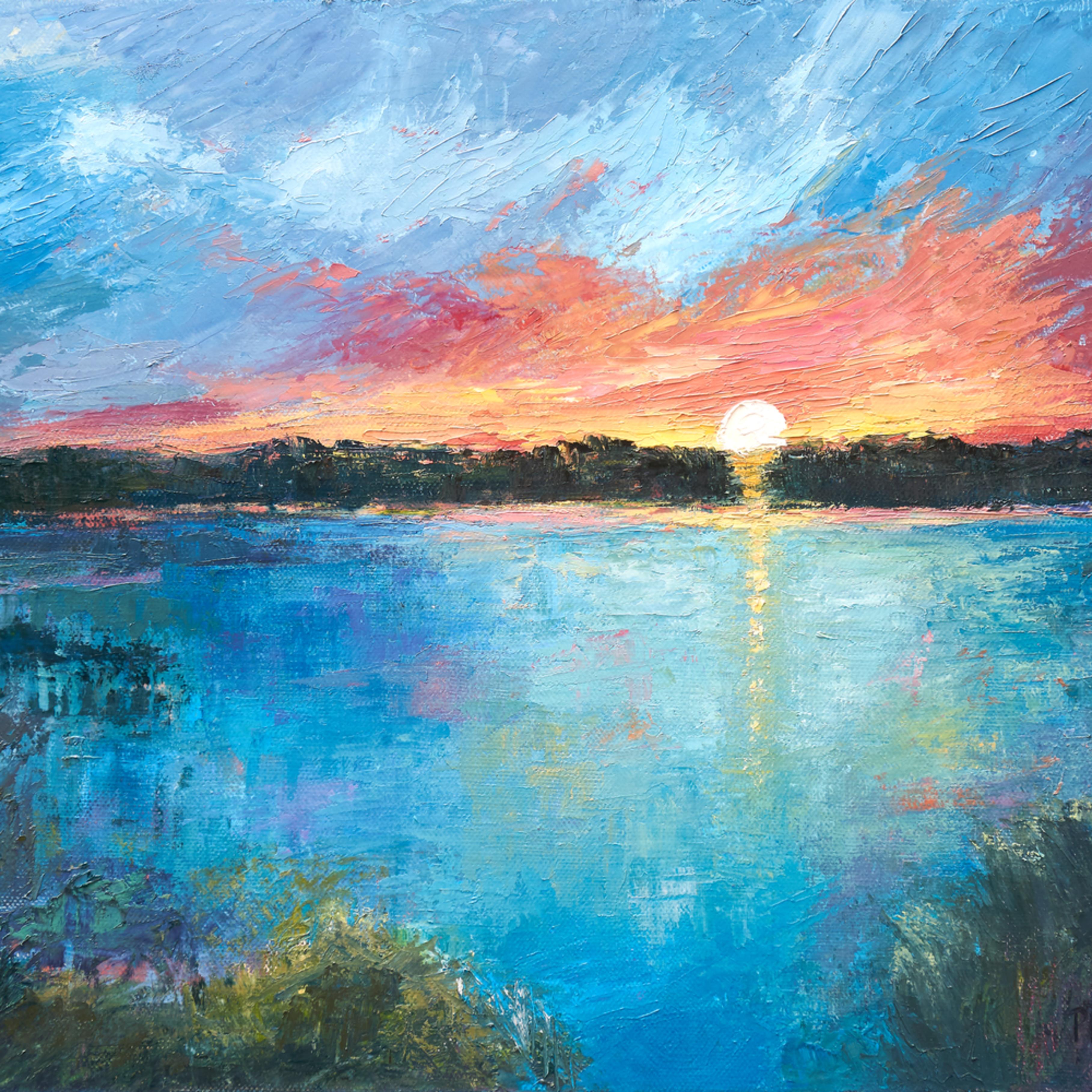 The marsh at sunset ii wxjwtq