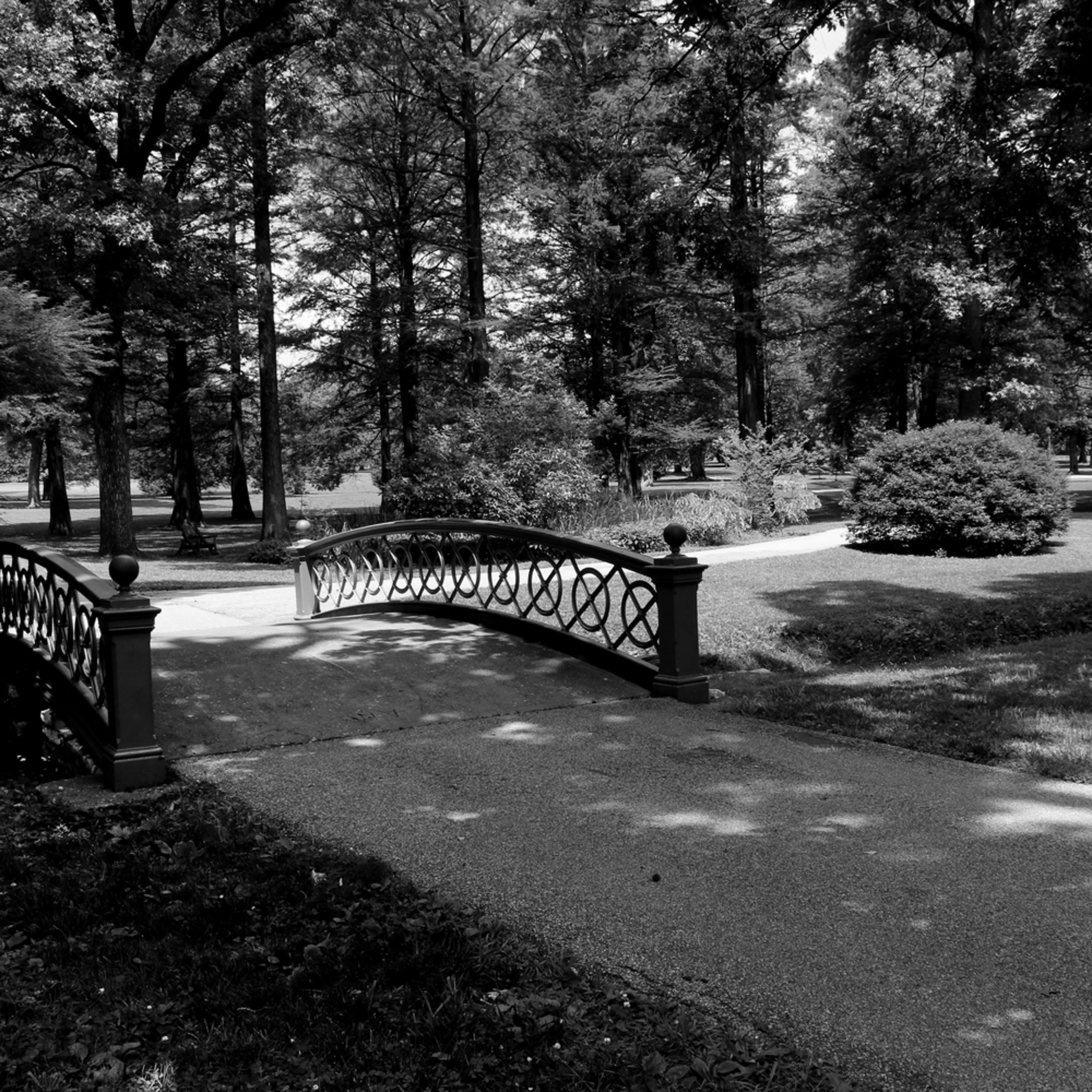 Bettymoore towergroveparkbridge bw 6391 igjhwd