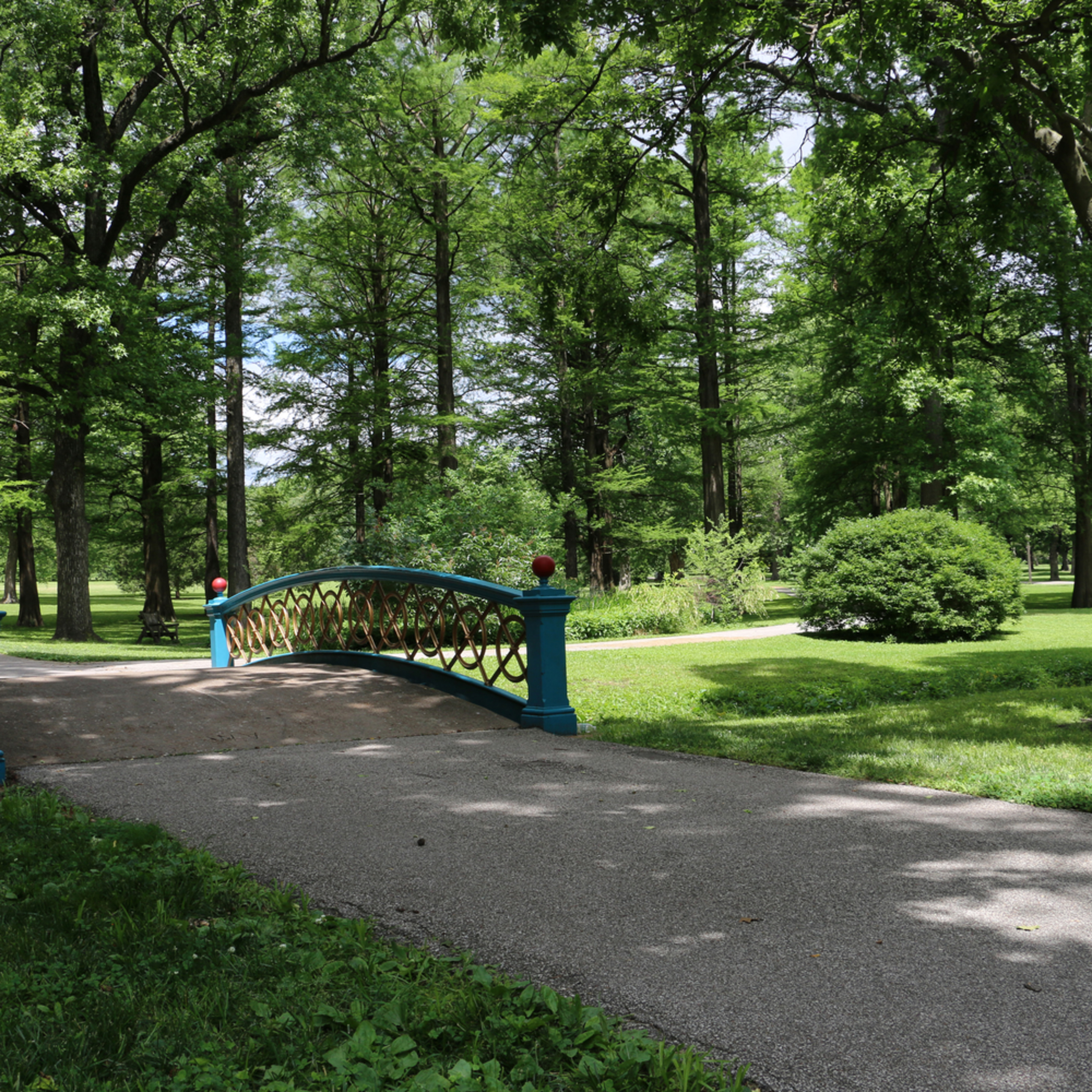 Elizabethmoore footbridgetowergrovepark 6392 wysdte