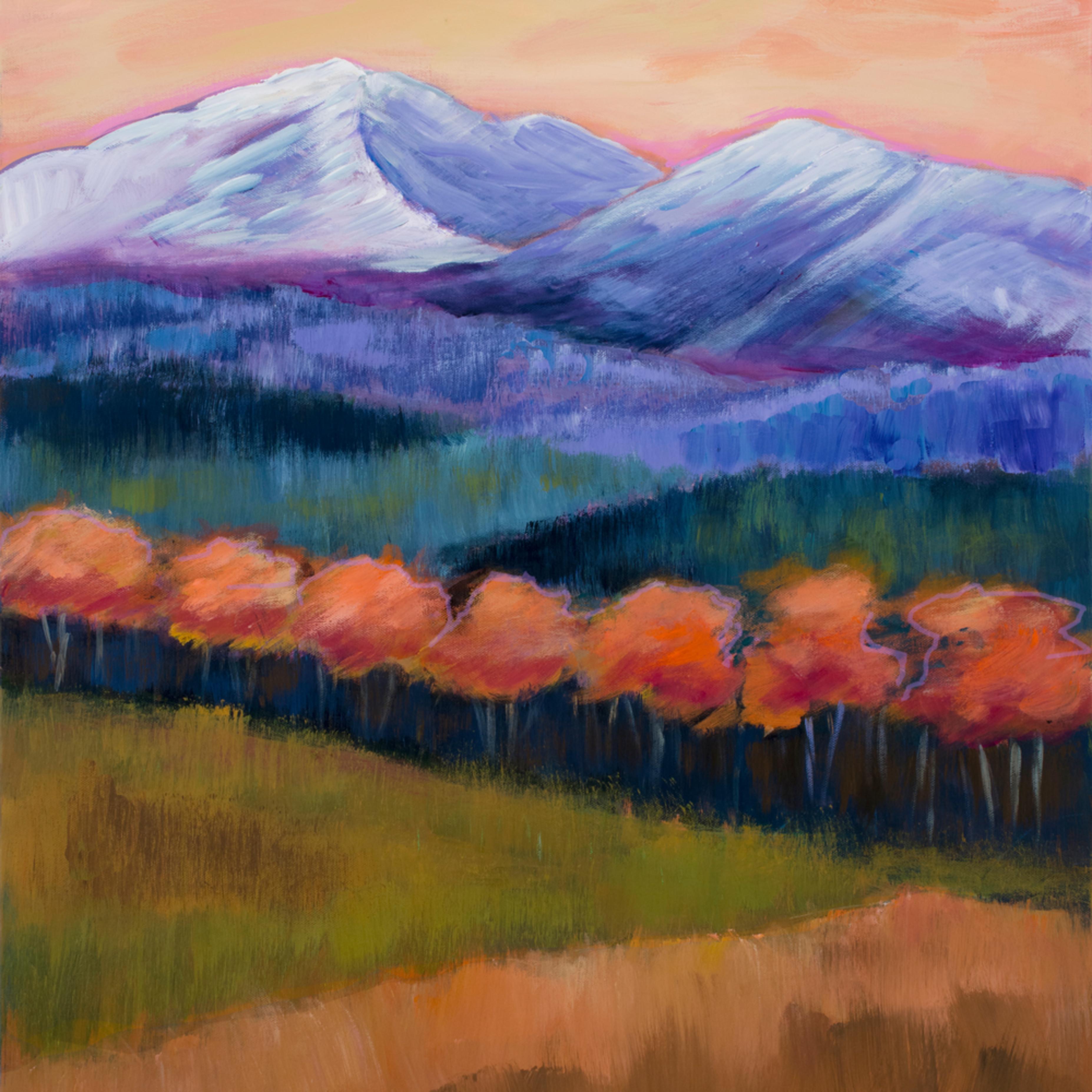 White mountains 0002 lgllun
