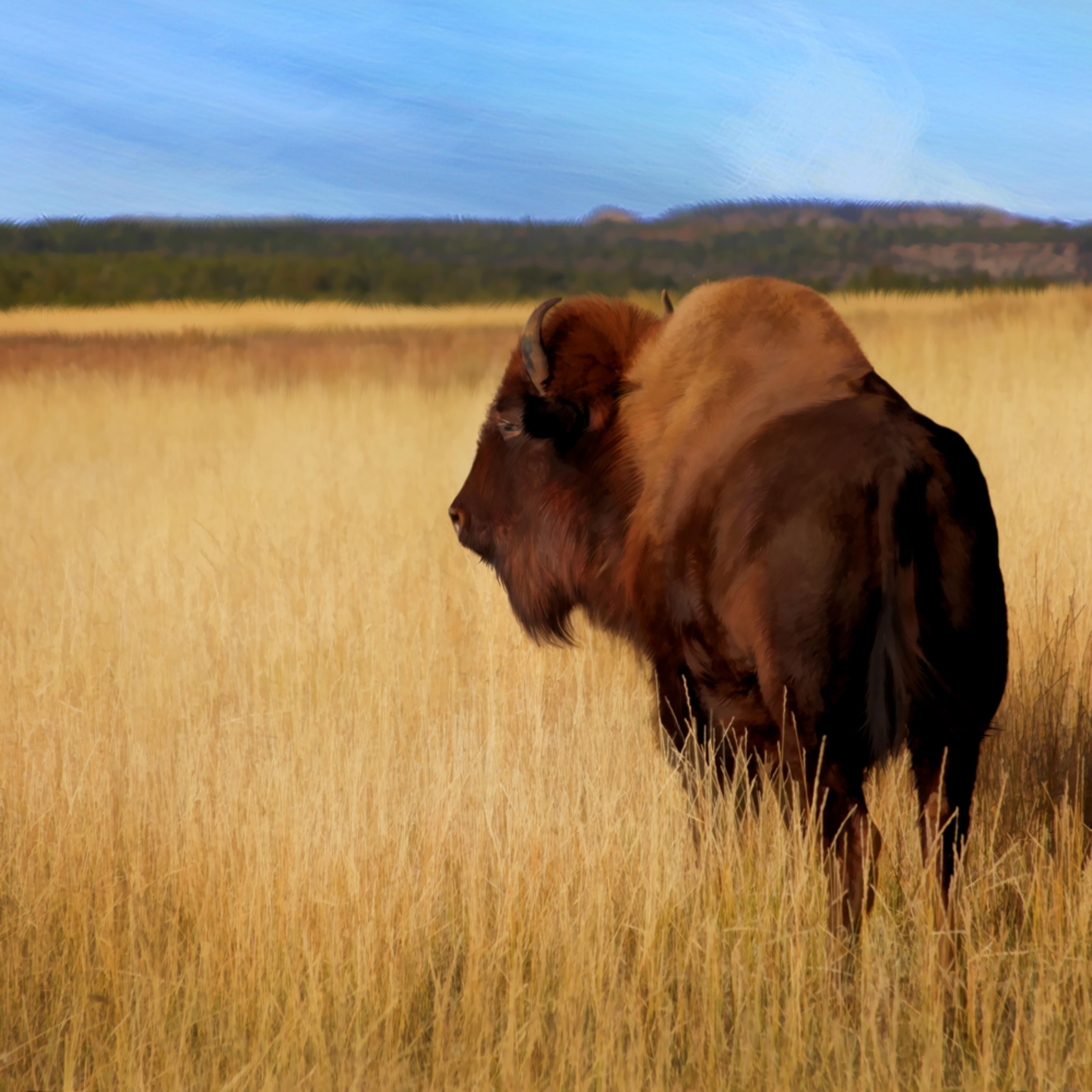 Buffalo utah rcs6rg