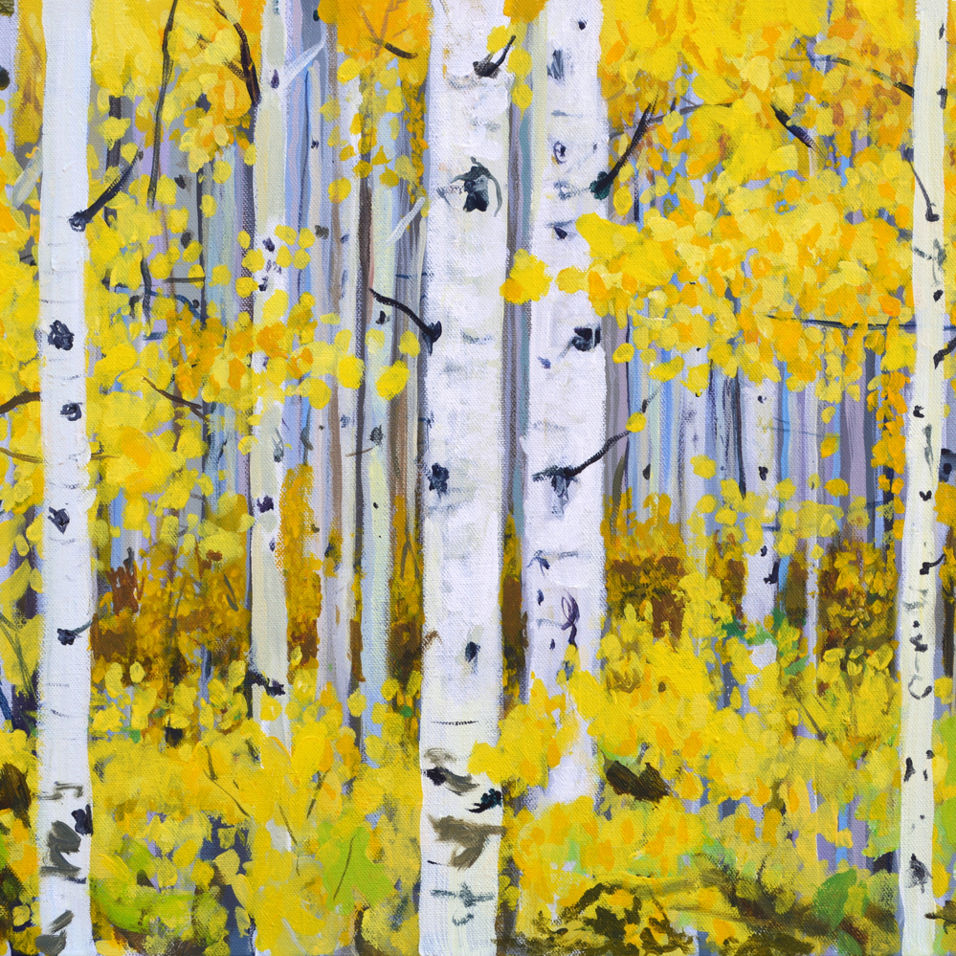 Among the aspens merged snwps7