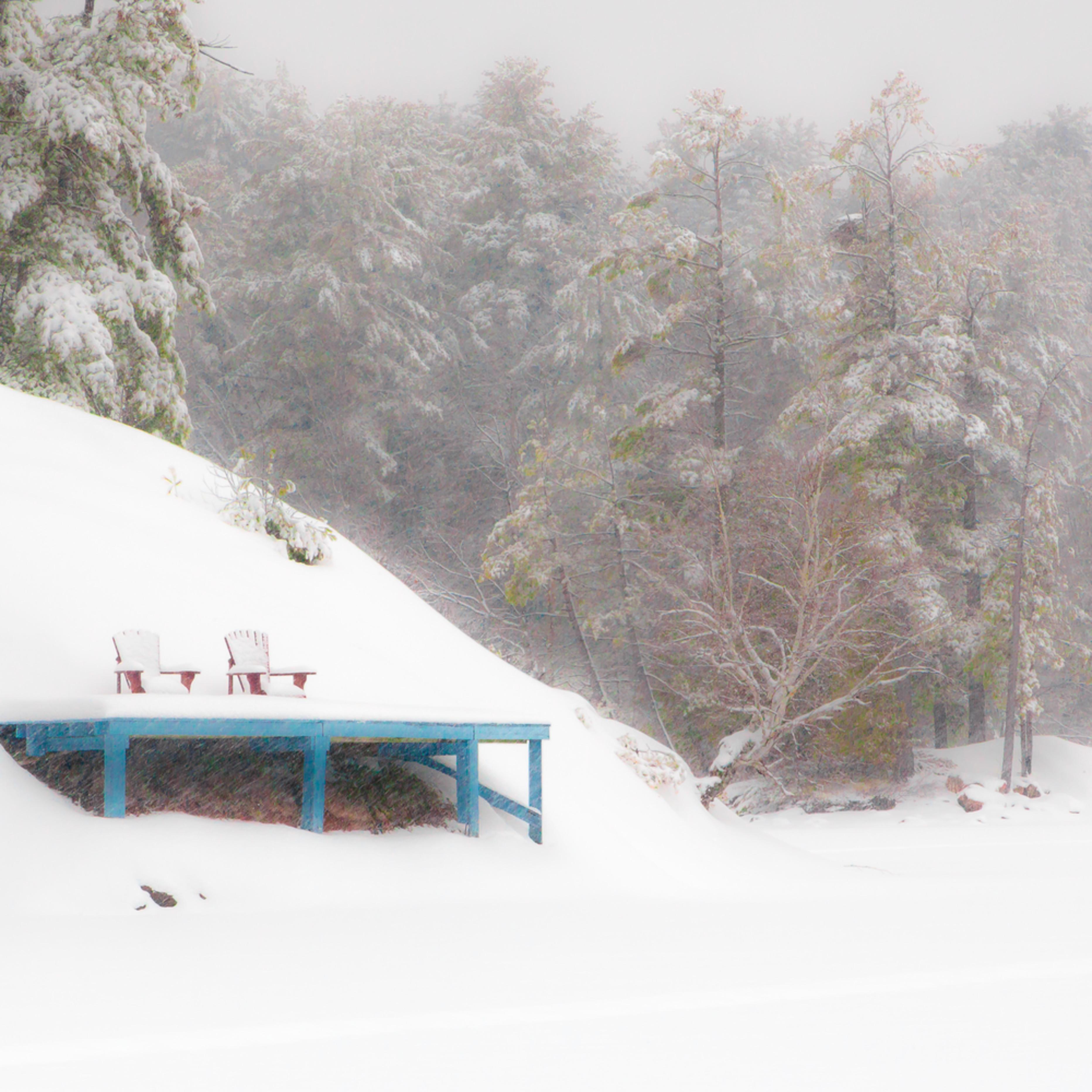 The snowstorm carfrh