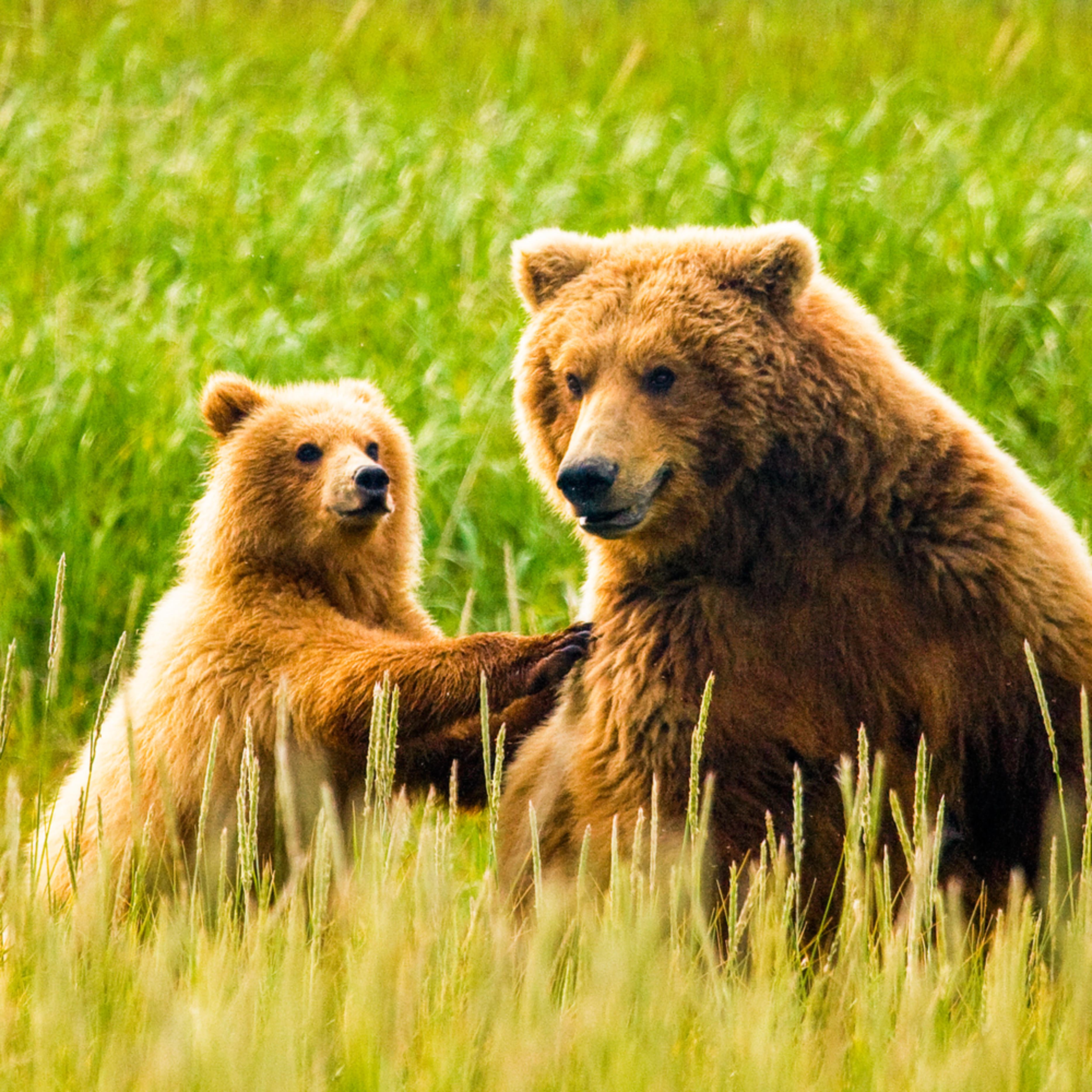 Alaska 20110717 0073 1 snmqu2