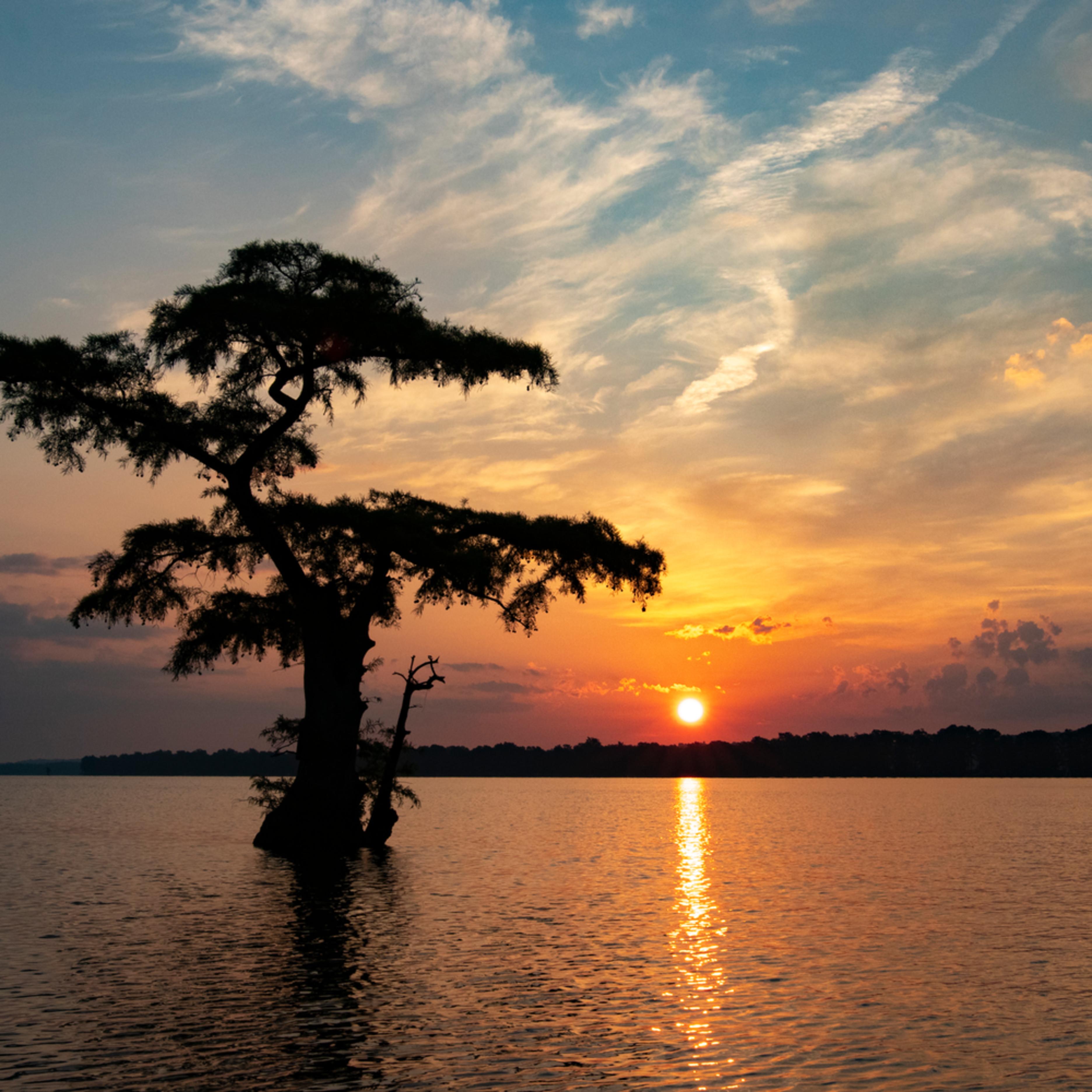 Sunrise lone cypress g  mg 7966 rlt20 xsdvyt