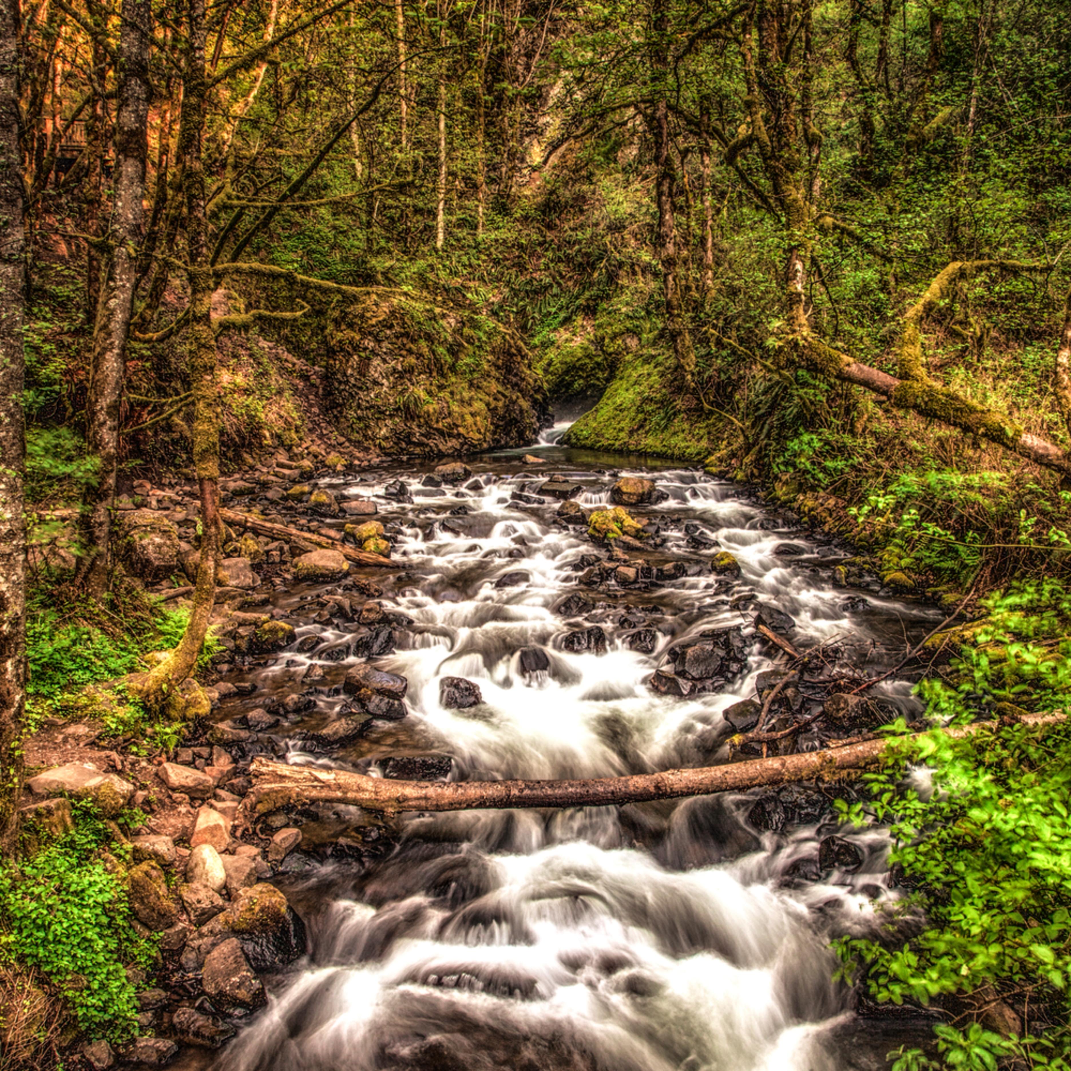 Creek below bridal veil falls vnjpzq