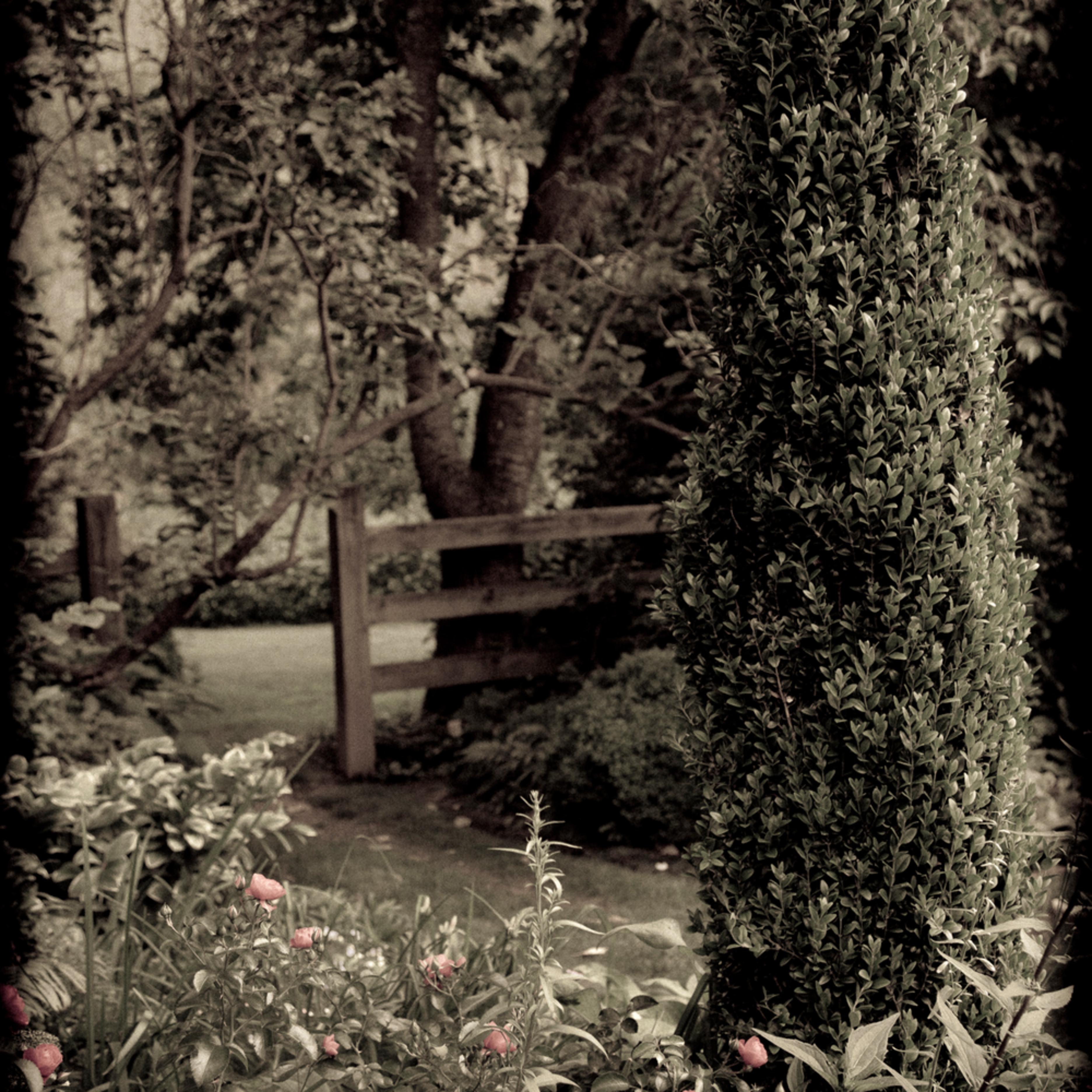 Arboreta 7558 bpuo3a